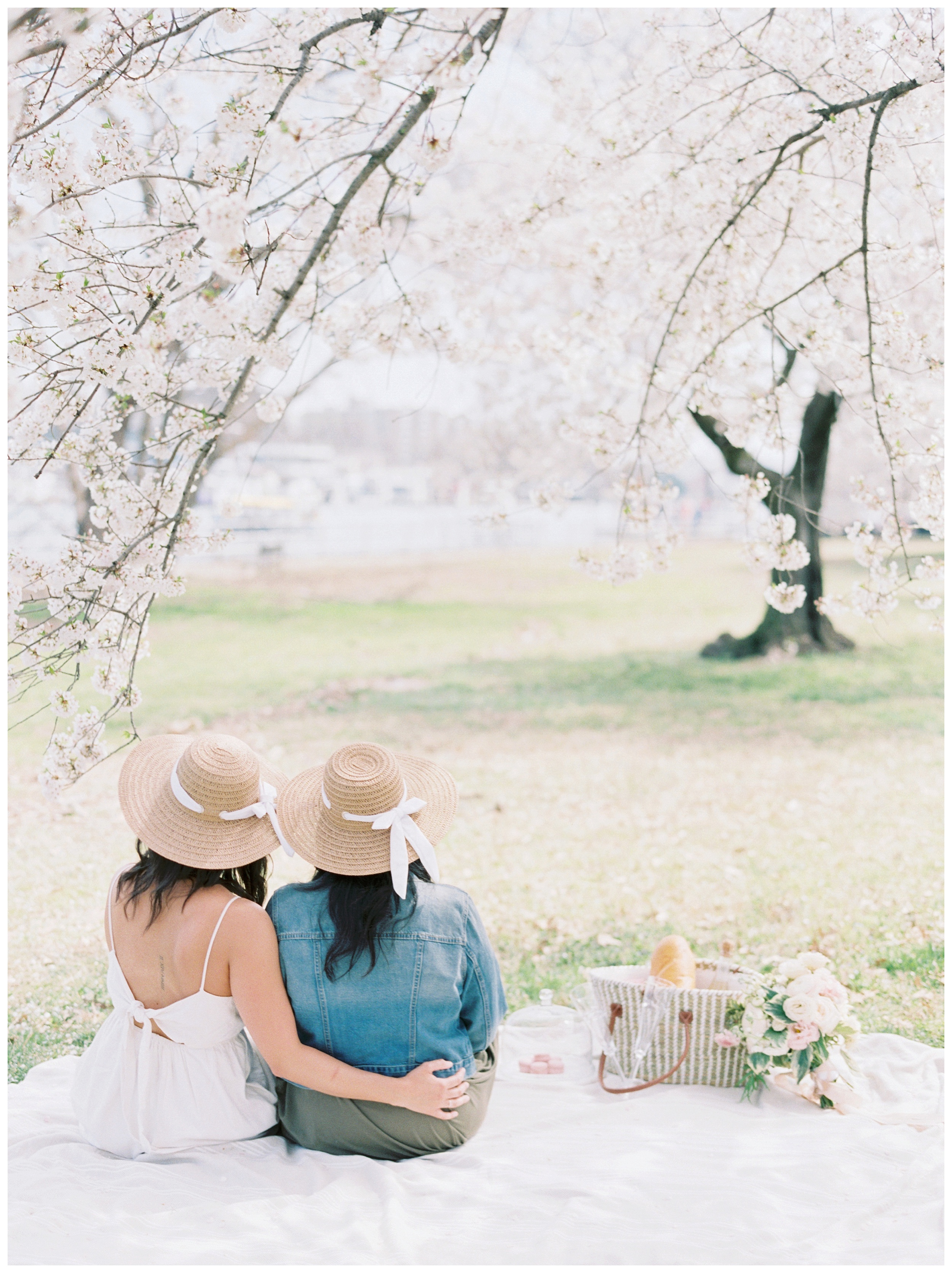 Same Sex DC Engagement | District of Columbia Cherry Blossom Engagement Kir Tuben_0000.jpg