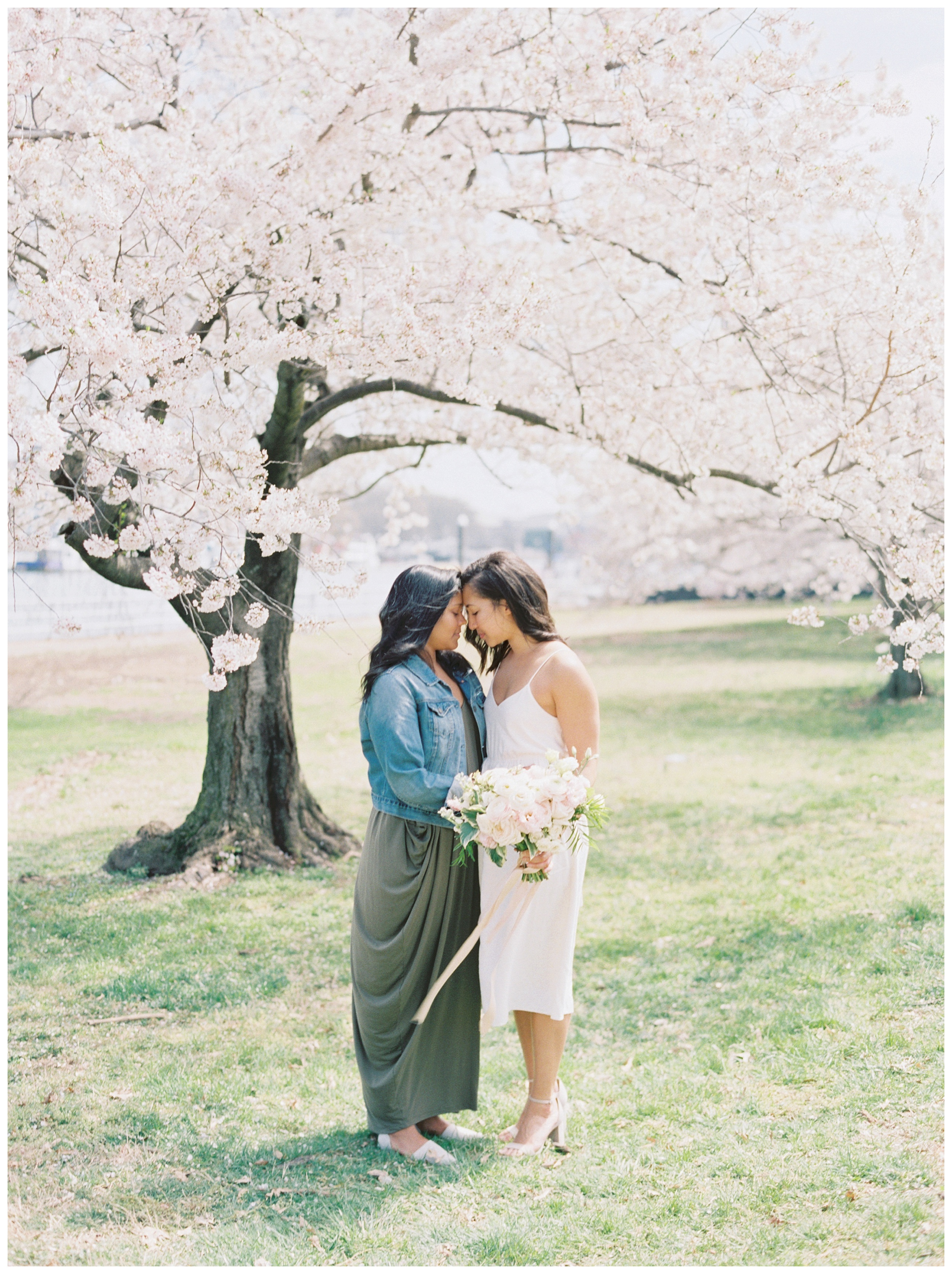 Same Sex DC Engagement | District of Columbia Cherry Blossom Engagement Kir Tuben_0001.jpg