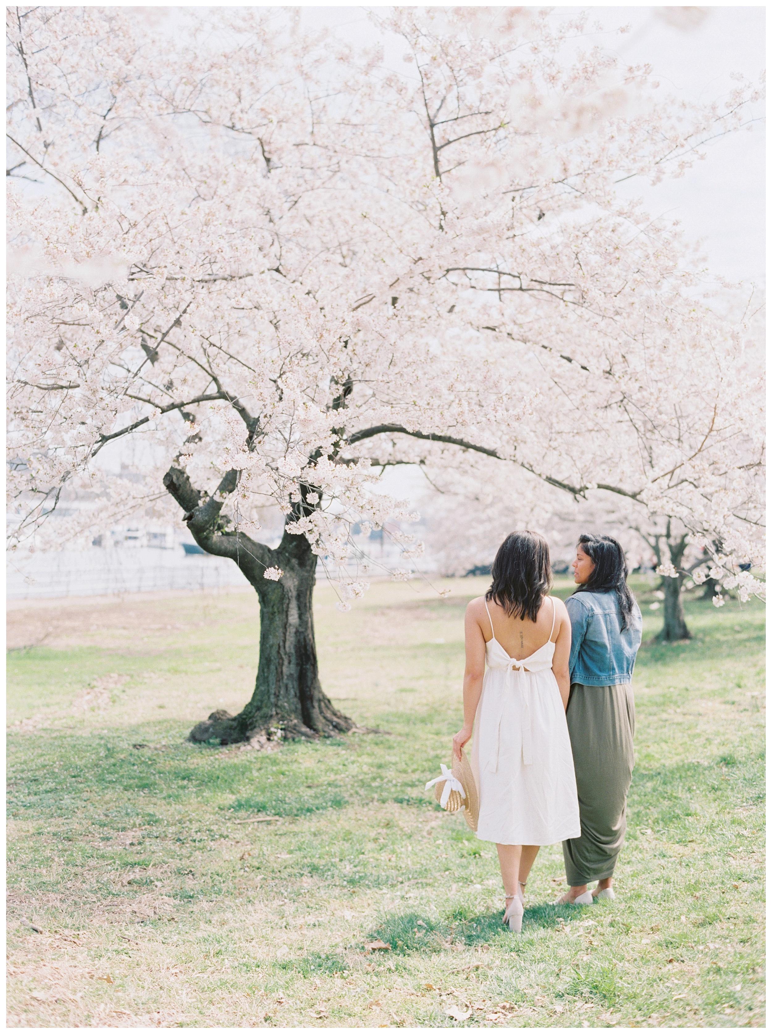 Same Sex DC Engagement | District of Columbia Cherry Blossom Engagement Kir Tuben_0018.jpg