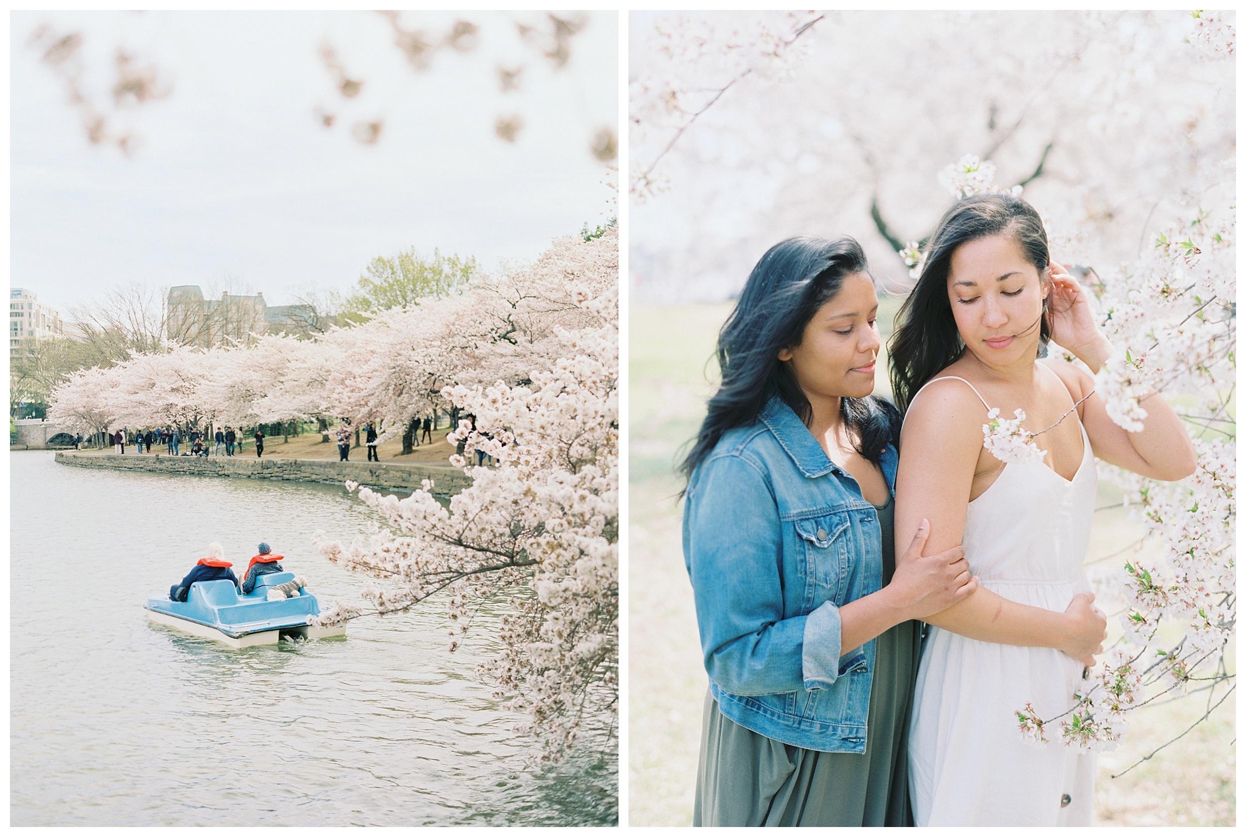 Same Sex DC Engagement | District of Columbia Cherry Blossom Engagement Kir Tuben_0025.jpg