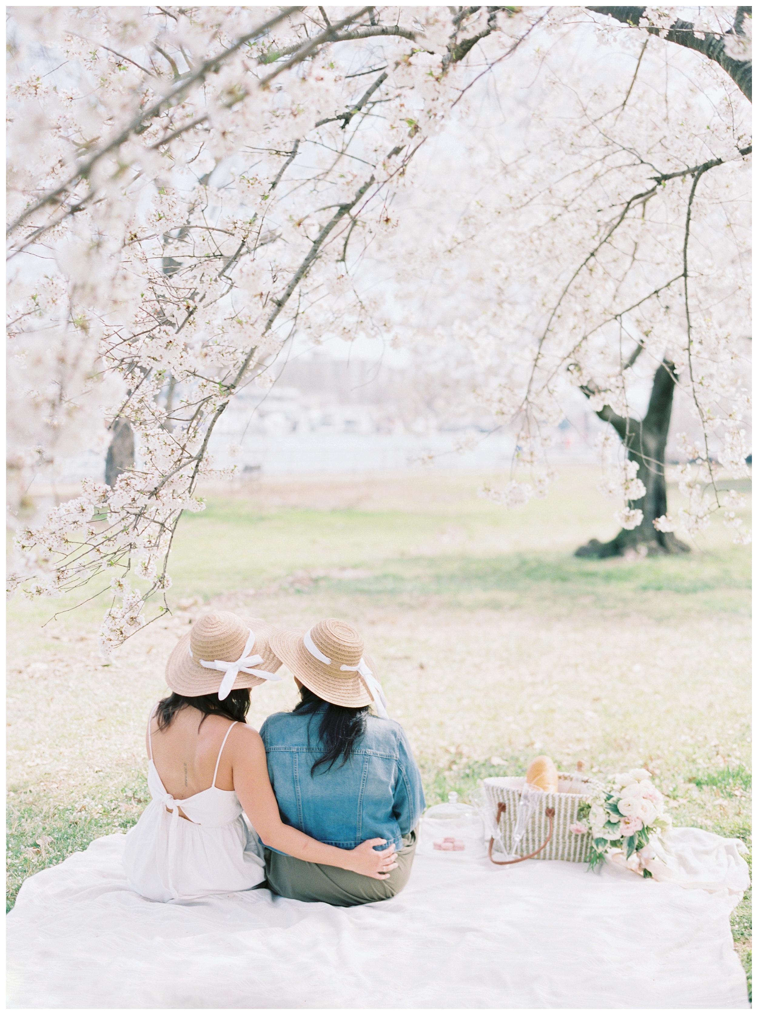 Same Sex DC Engagement | District of Columbia Cherry Blossom Engagement Kir Tuben_0024.jpg