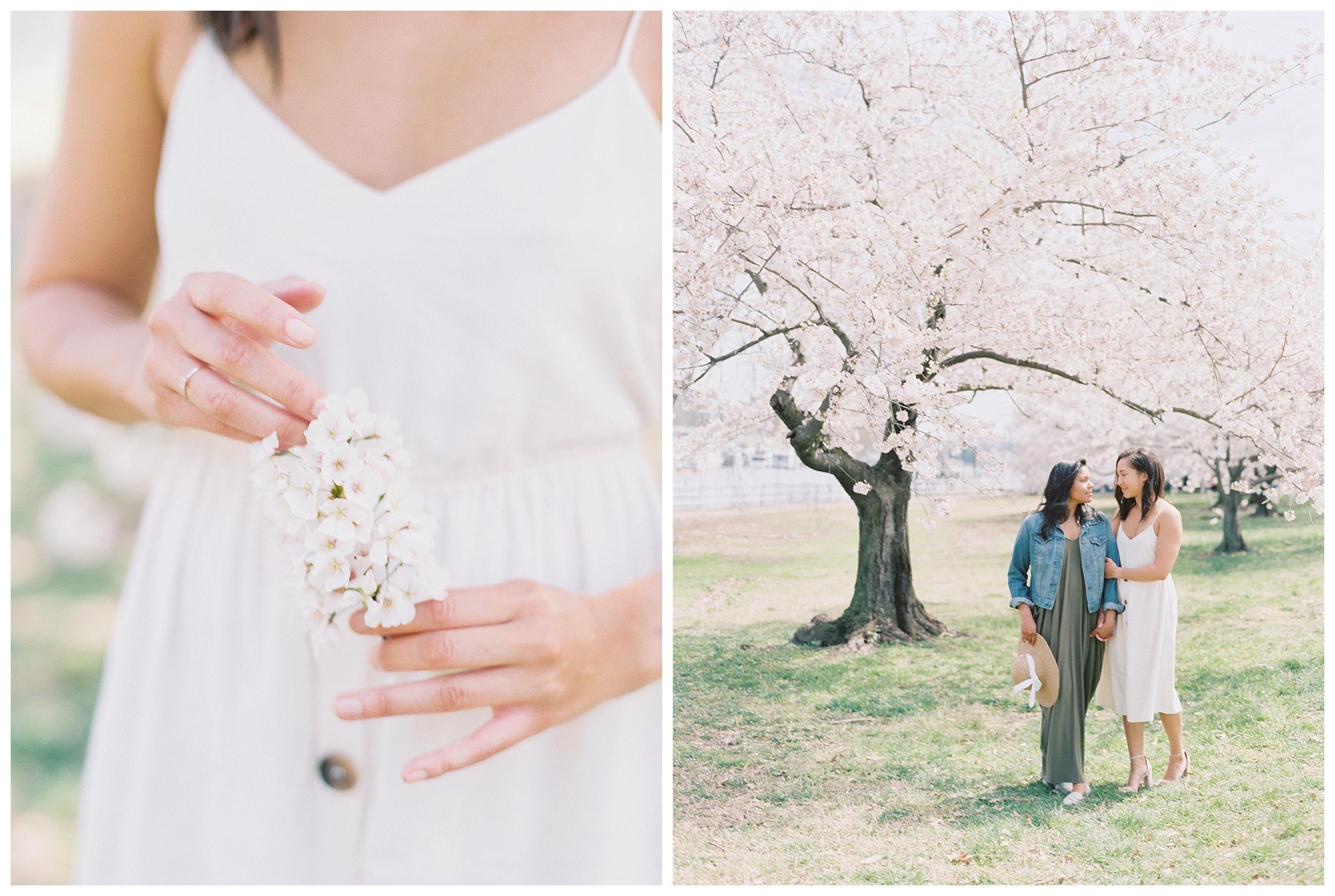 Same Sex DC Engagement | District of Columbia Cherry Blossom Engagement Kir Tuben_0031.jpg