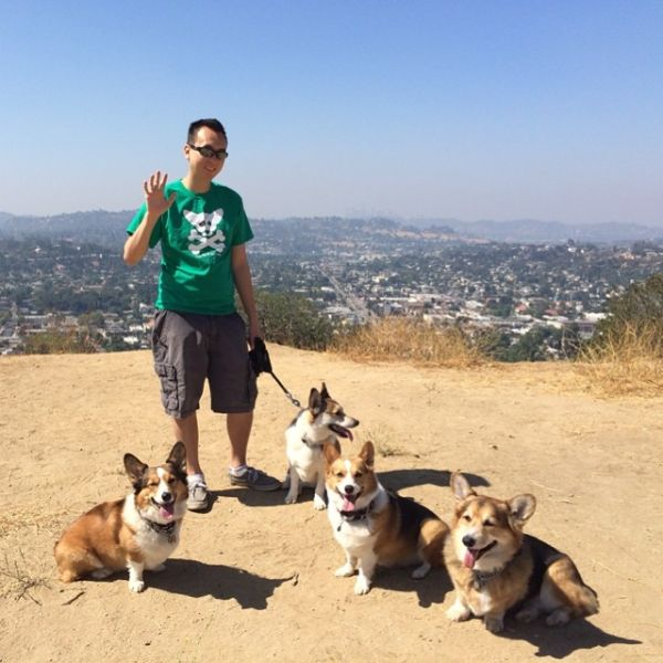 Like many other like minded teens,  Michael Dong 's obsession with corgis started with S1E2 of Cowboy Bebop. And like many at that age, concepts of animal welfare were beyond reach. 3 corgis, 15 years, and many lessons later, Mike now runs back office operations for Queen's Best Stumpy Dog rescue. During his free time he enjoys food, gaming, and sleep (usually in that order). His days are spent holed up in the office doing corporate contract accounting at one of the major Hollywood studios.