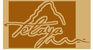 teleyaLogo1.png