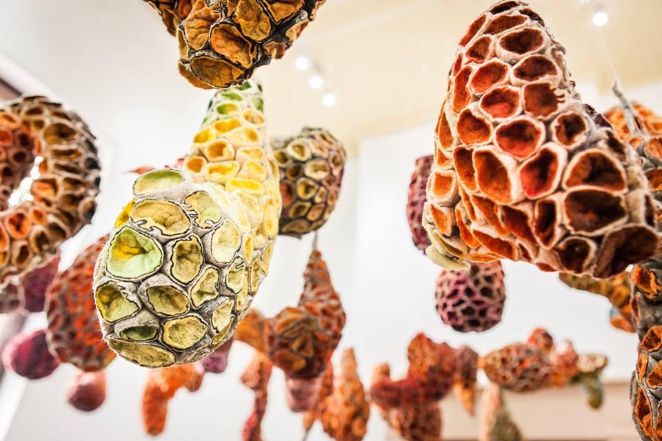 installation view Marjolein Dallinga's solo exhibition   Desert Flowers 2015