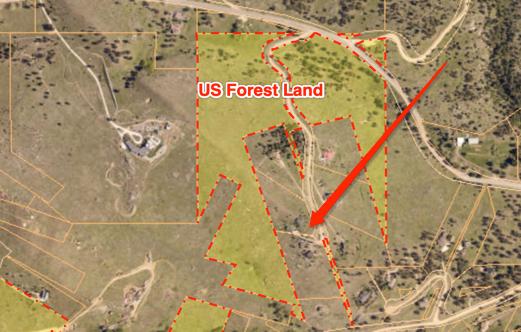 forest land.jpg
