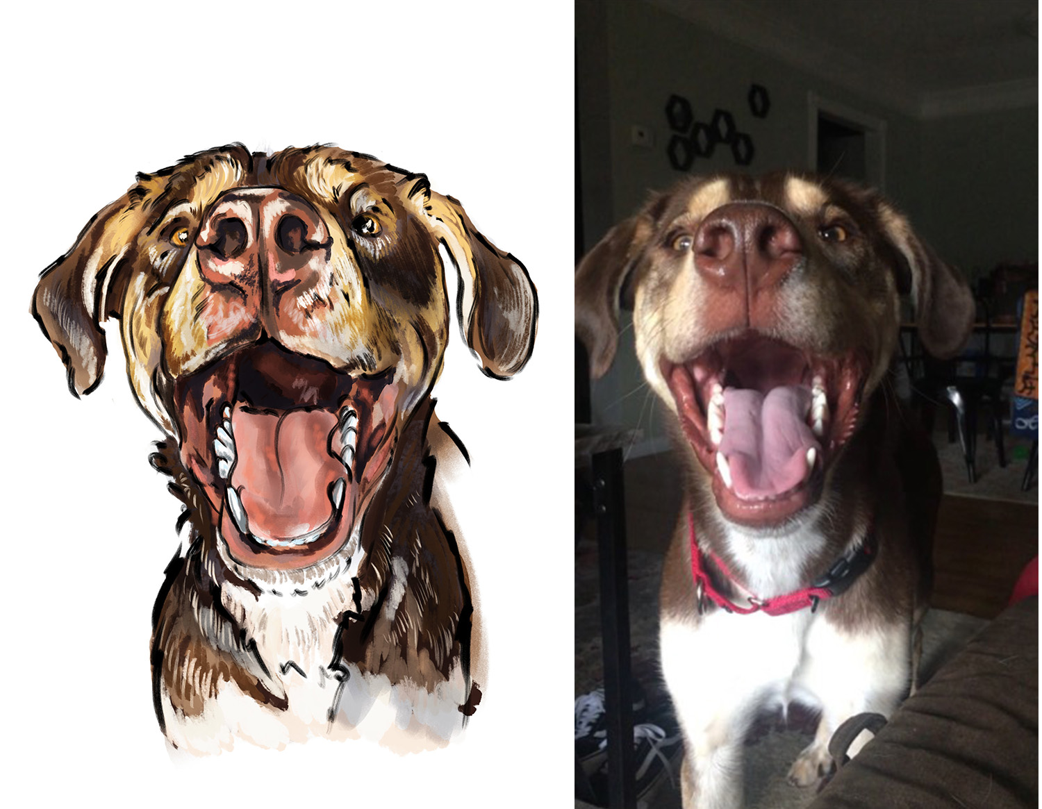 pet portrait-ben.jpg
