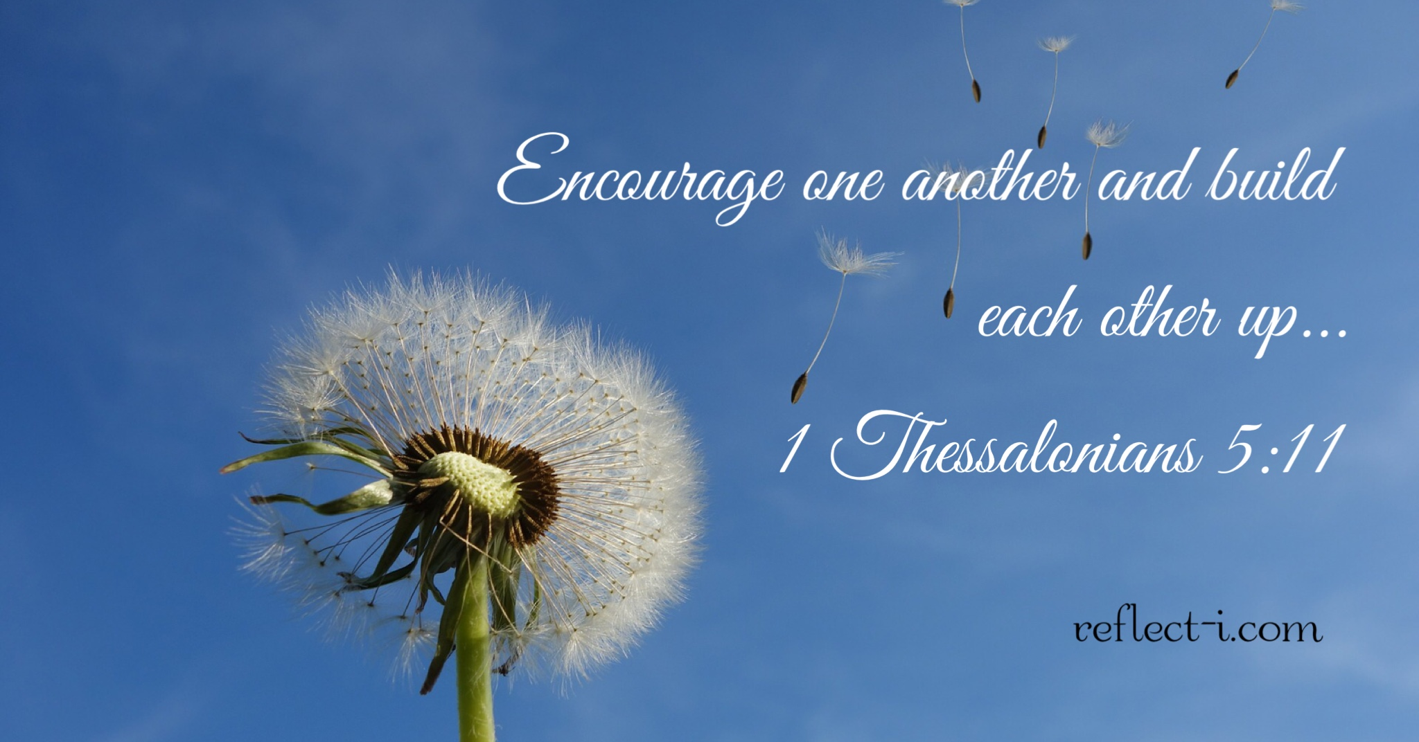 encourage one another.jpg