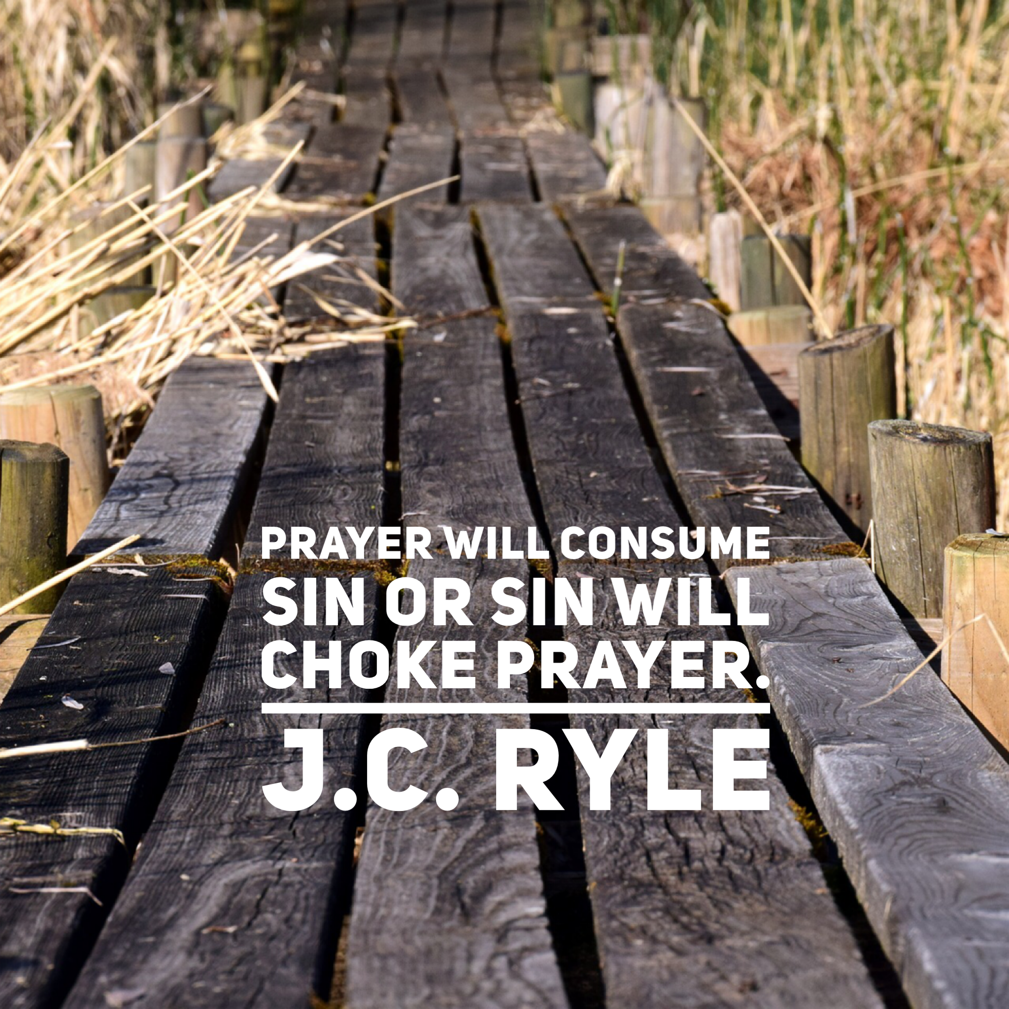 prayer quote.png