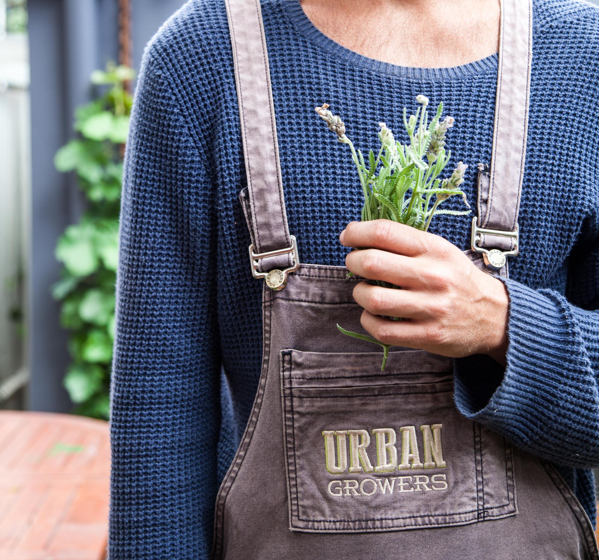 UrbanGrowers-PaddingtonGarden-14.jpg