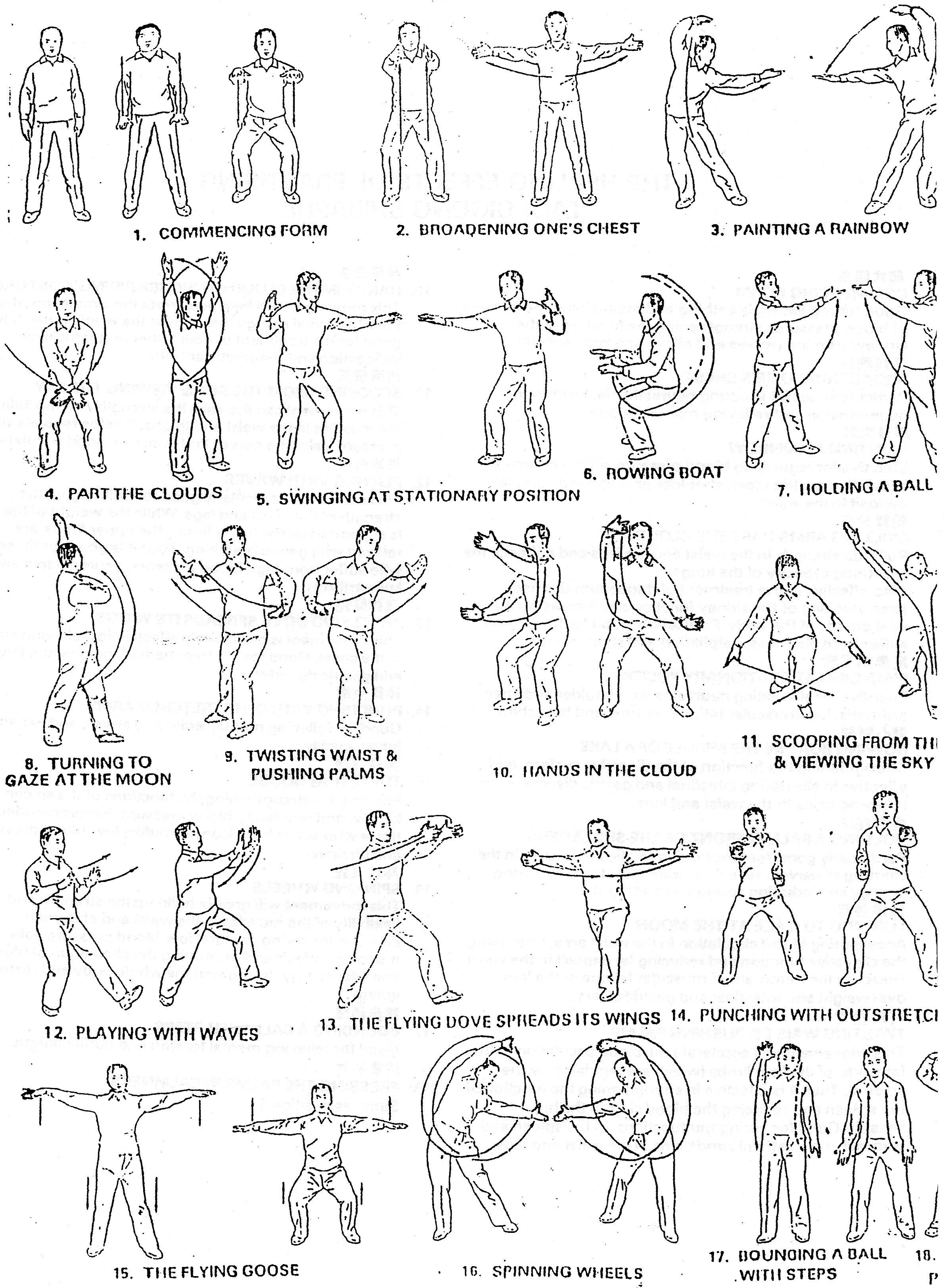 18 Steps Cart of movements.jpg