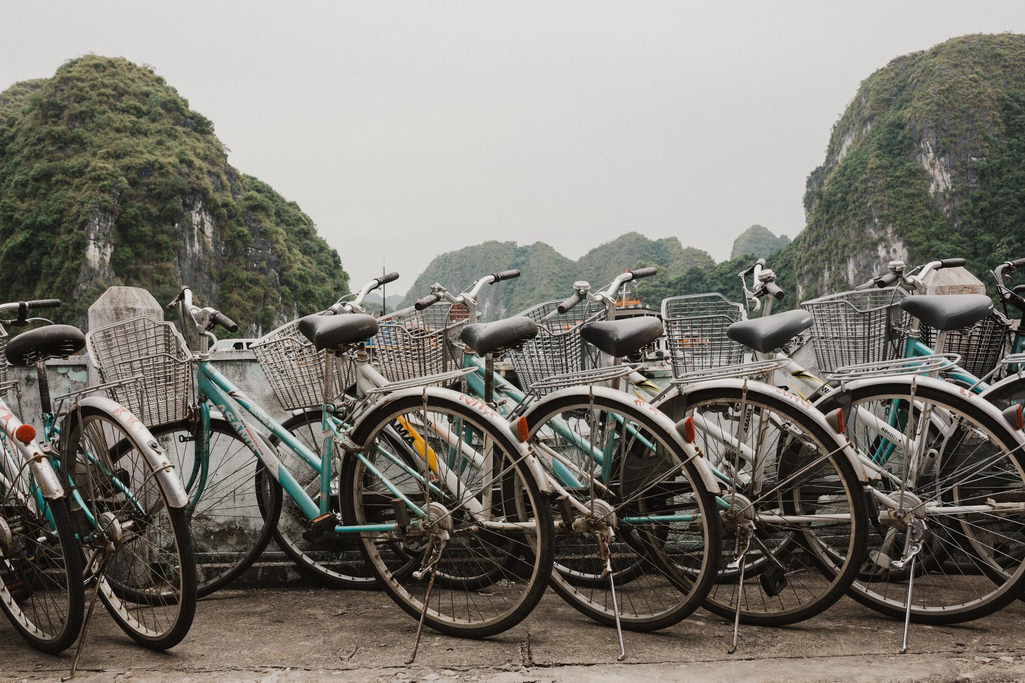 bikingtourcatbabay2.jpg