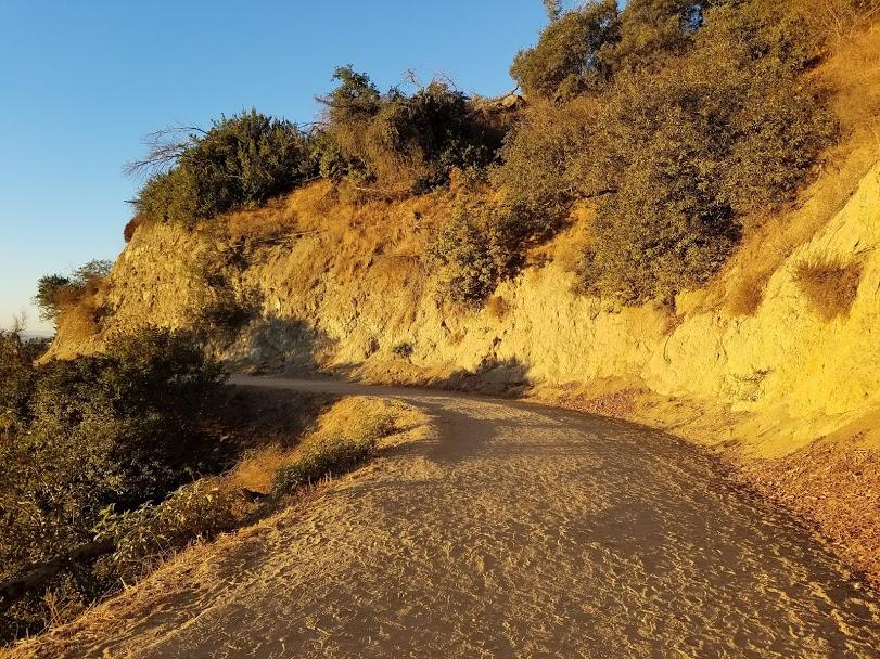 Dangerous trails