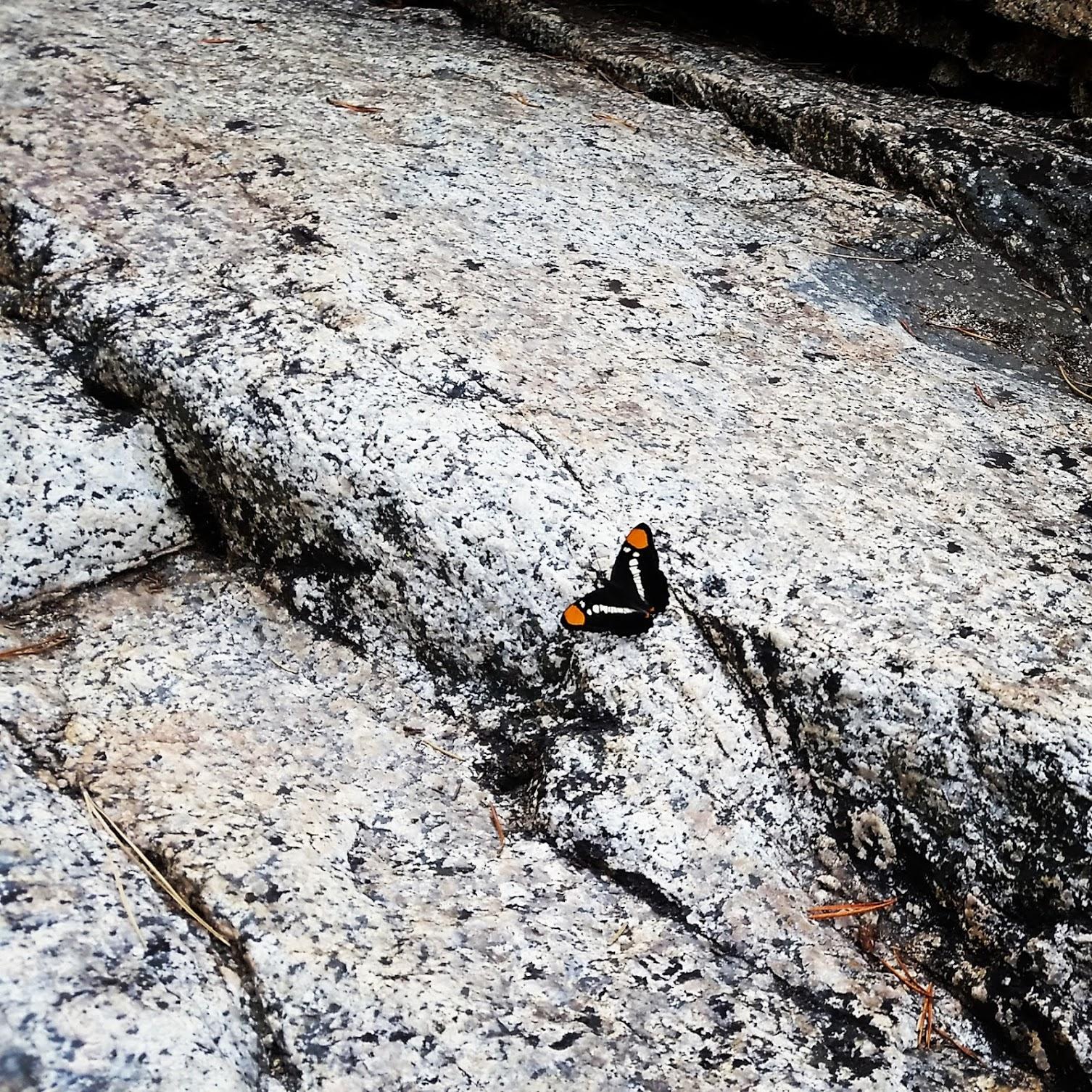Rock hard boundaries
