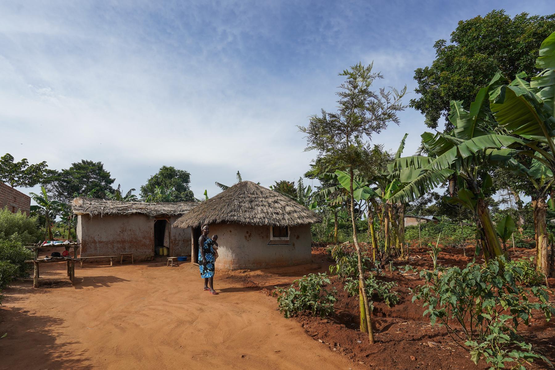 A model household on Zinga Island, Uganda