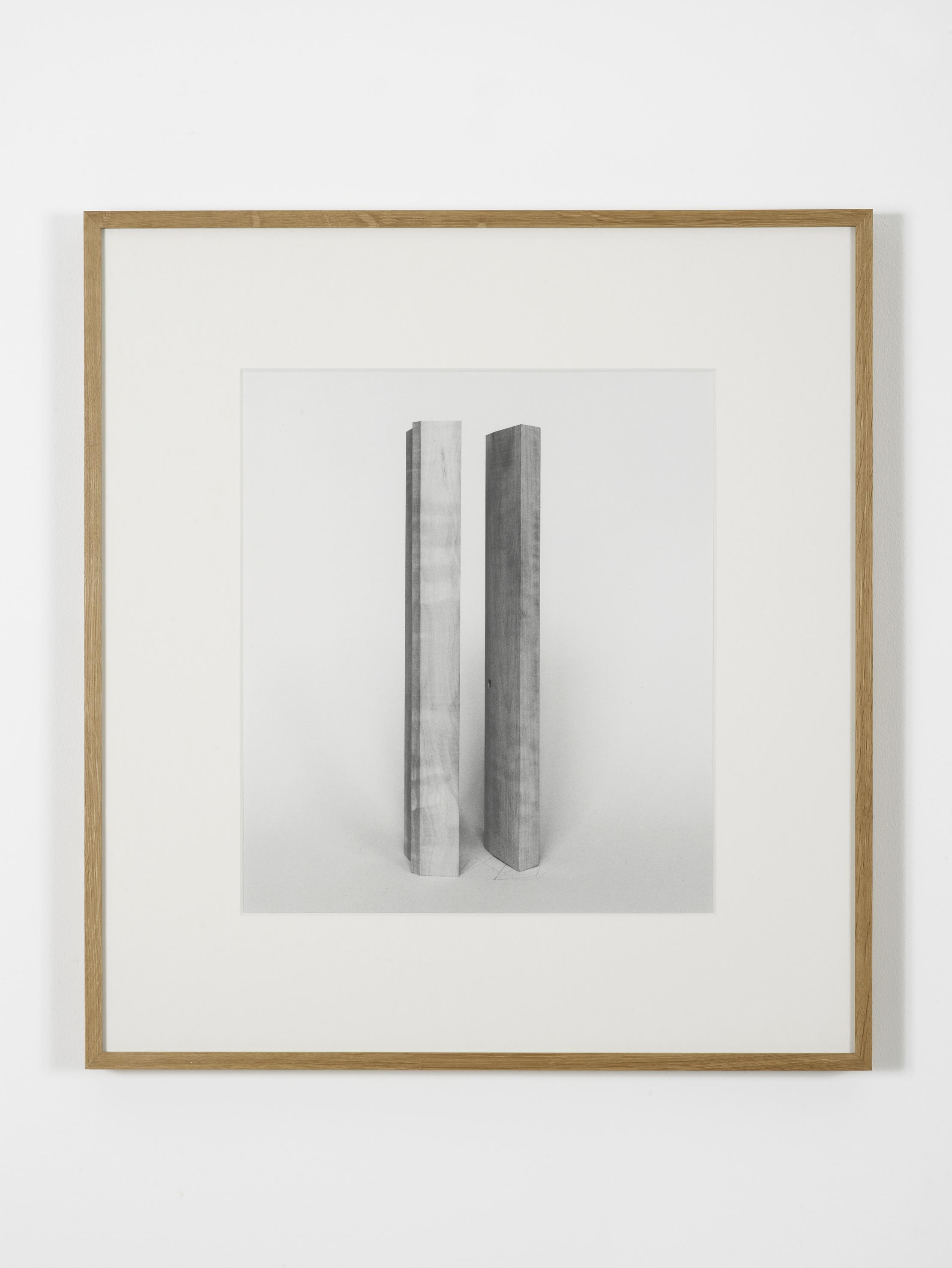 Becky Beasley,  Extensions (Elaboration No. 1) , 2012. Gelatin silverprint, 164.5 x 123 cm, framed 175.3 x 134 cm. Courtesy Laura Bartlett Gallery, London.
