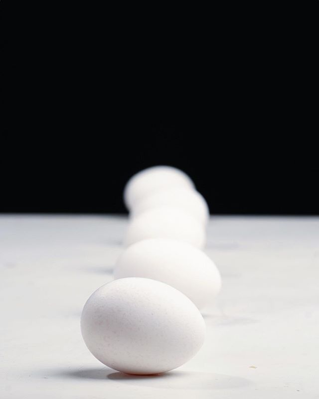 The simple things.  #fineart #studiophotography #portraitphotography #mood #minimalism #modern #art #fineartphotography #egg