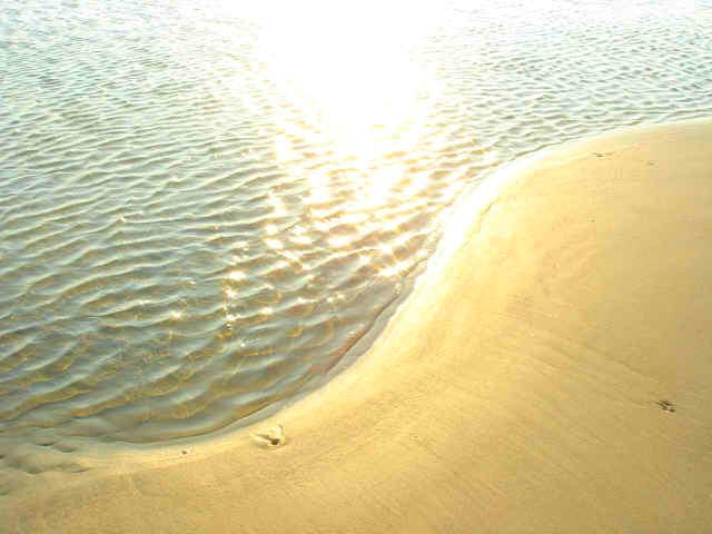 beach%20swirl.jpg