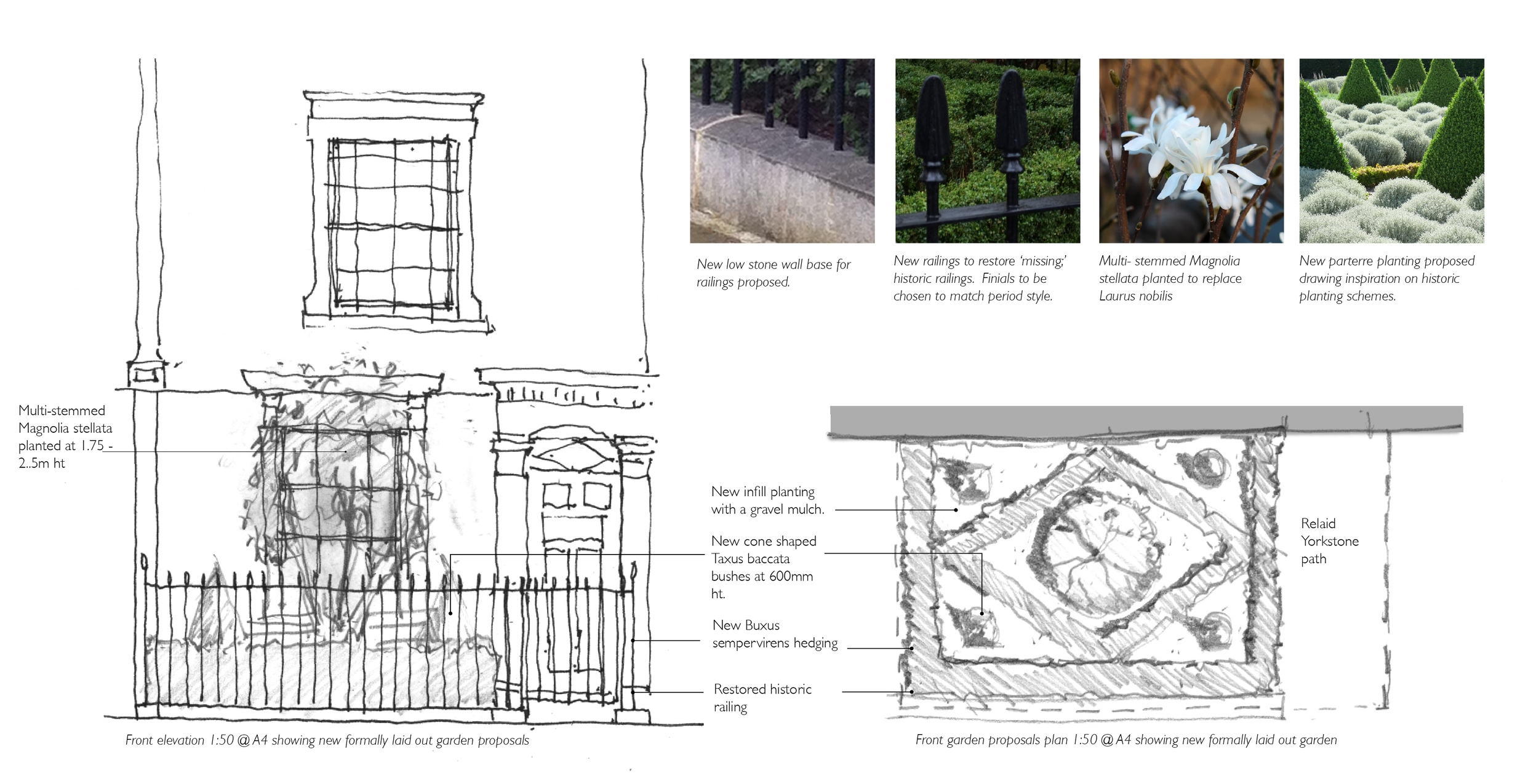 cleaver sq front garden images.jpg