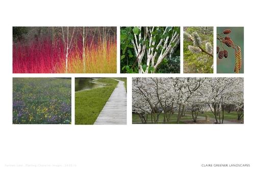 West London Landscape Architect West London Garden Design Claire Greener Landscapes