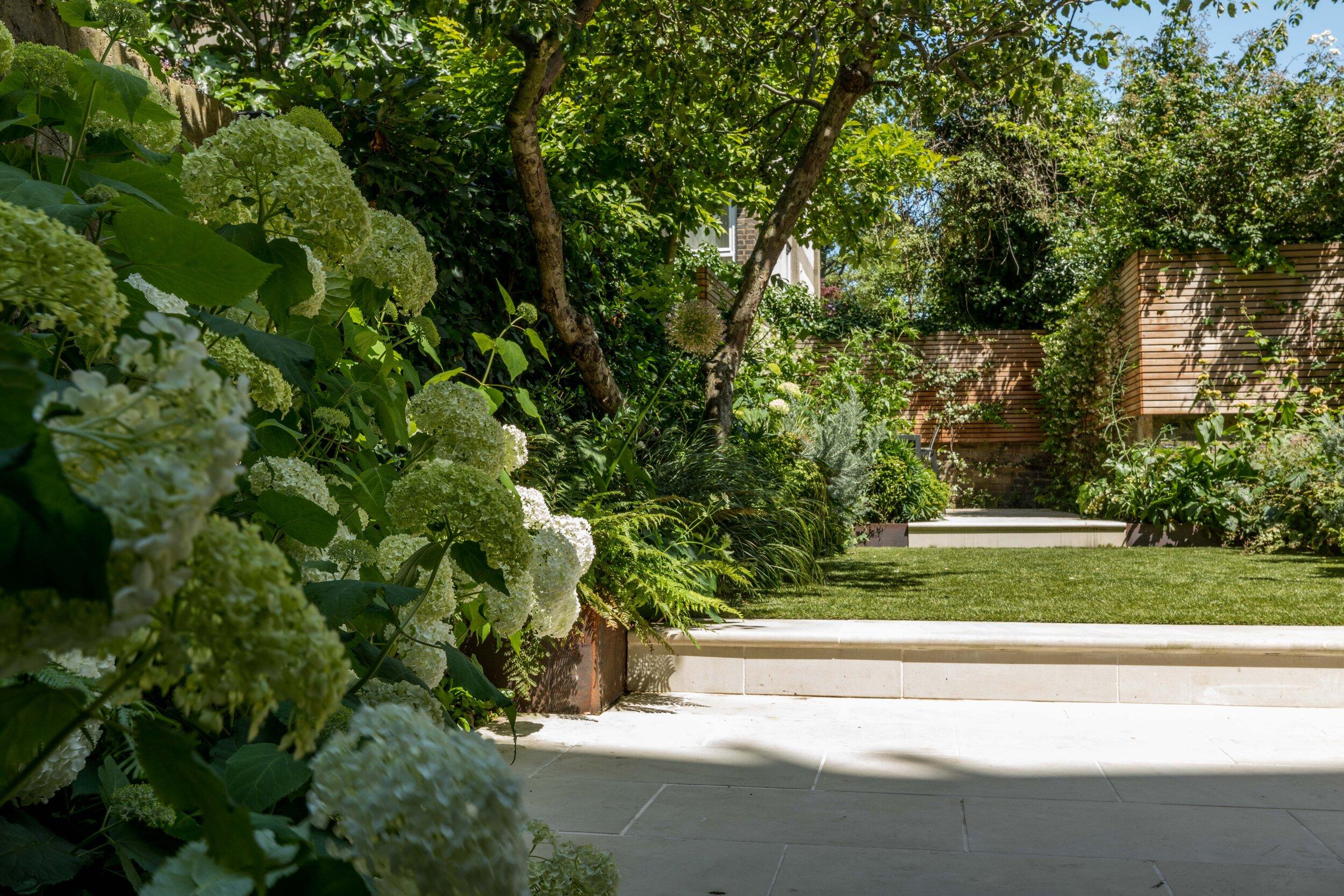 Notting Hill Family Garden West London Garden Design West London Planting Design Br Claire Greener Landscapes