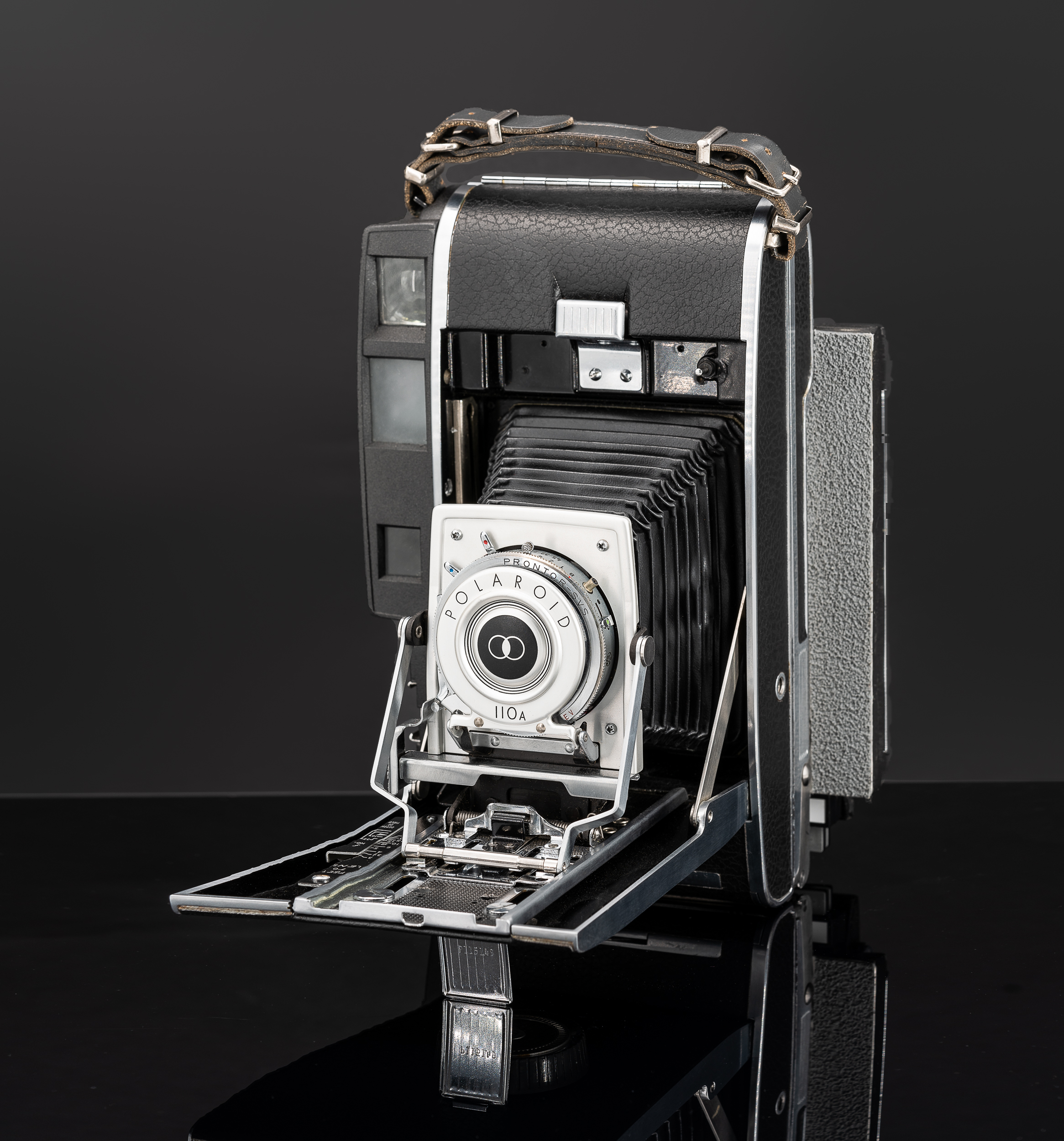 Polaroid 110A converted to 4x5
