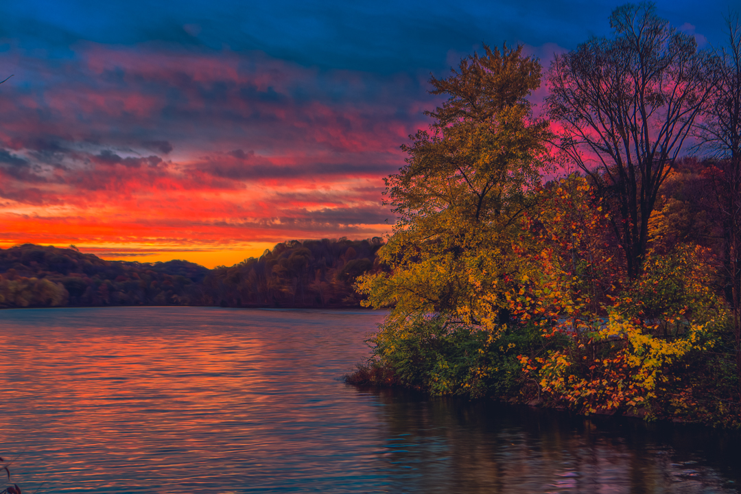 Picture from Radnor Lake courtesy of Warne Riker.