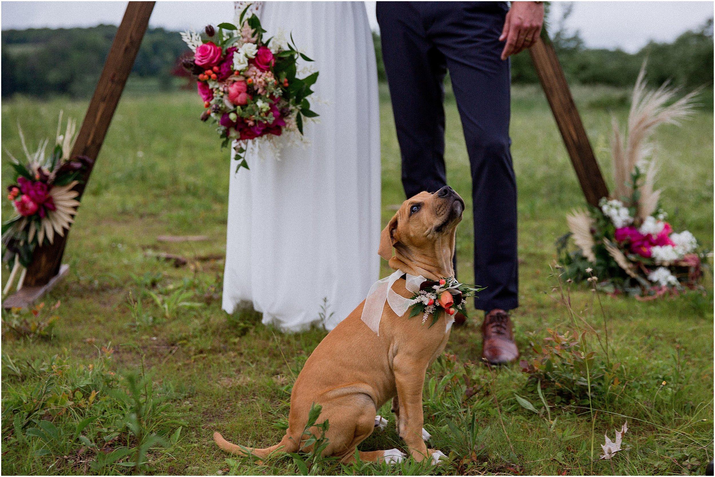 Pennsylvania_Wedding_Photographer_0027.jpg