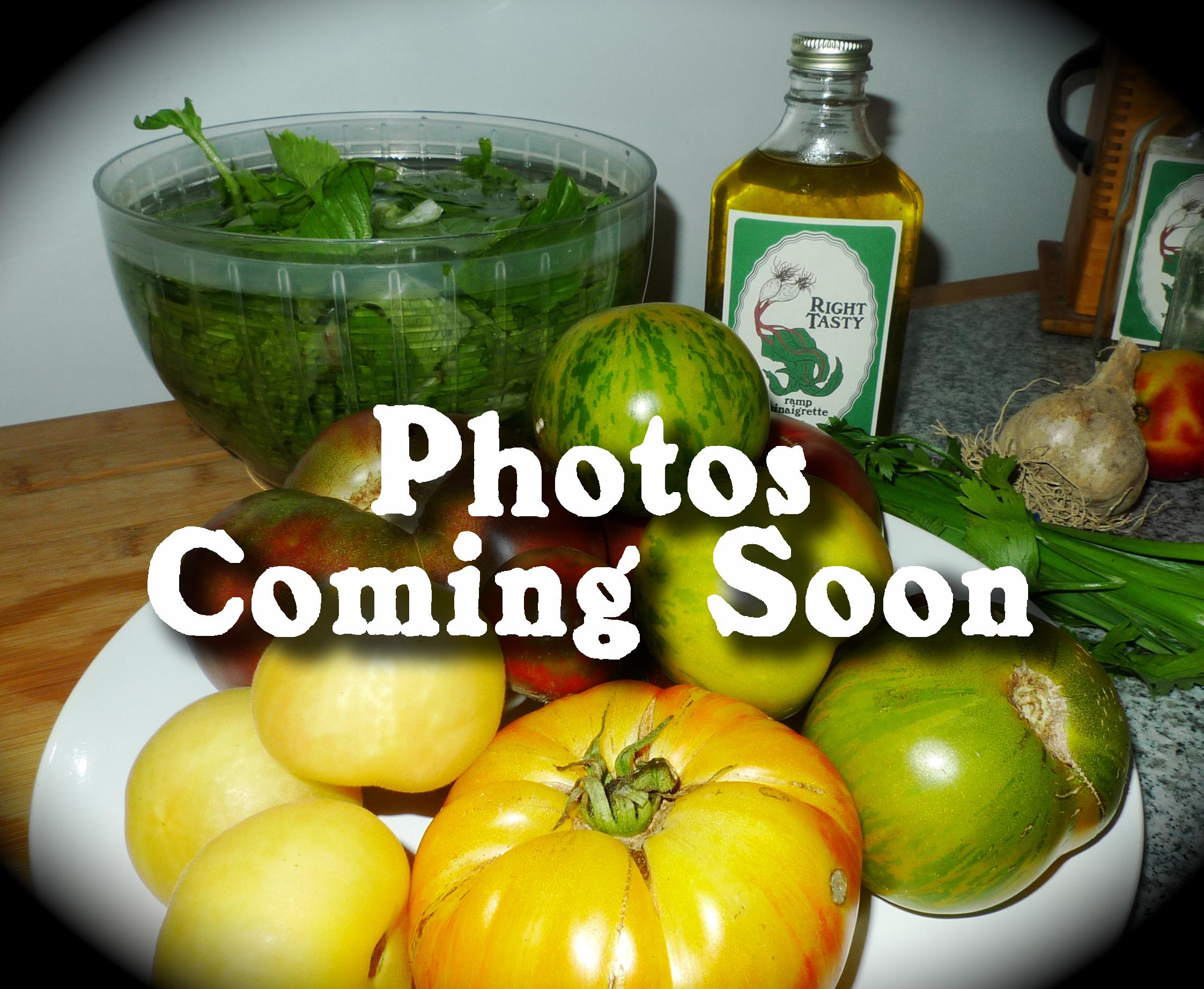 photos coming soon.jpg