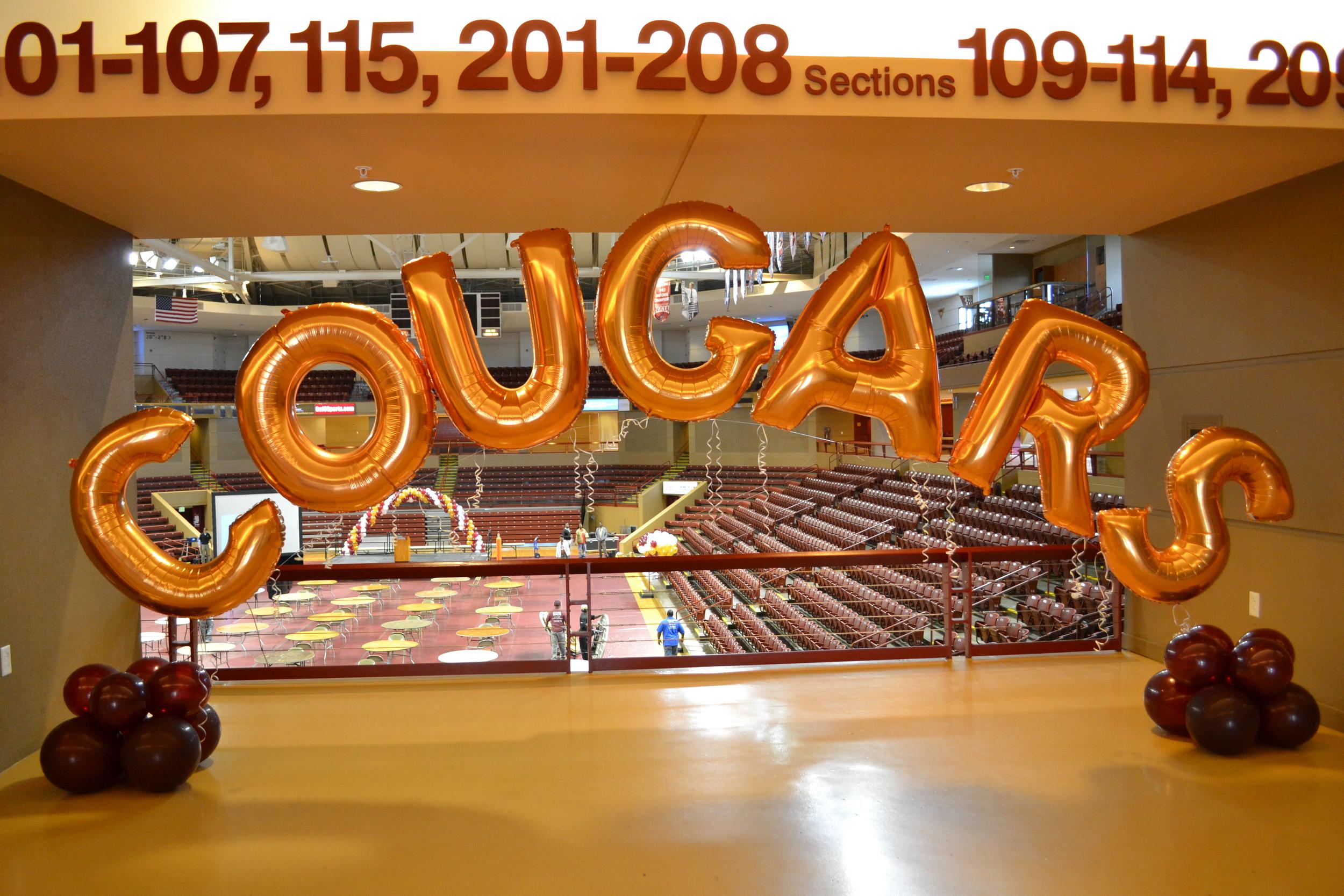 Cougars Carolina First Arena.JPG