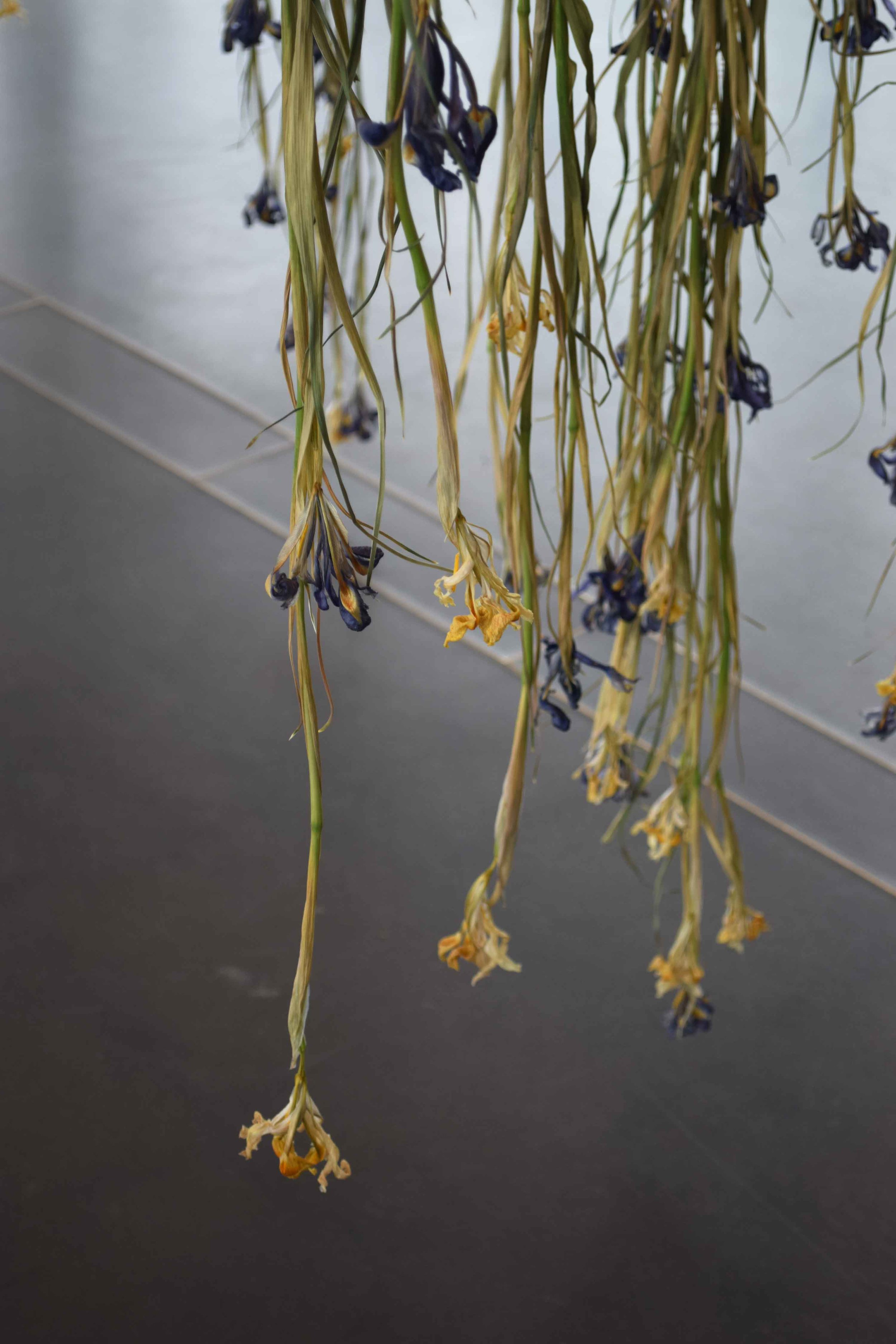 4 Things to learn form a Flower Installation 7 - ©Detail Movement