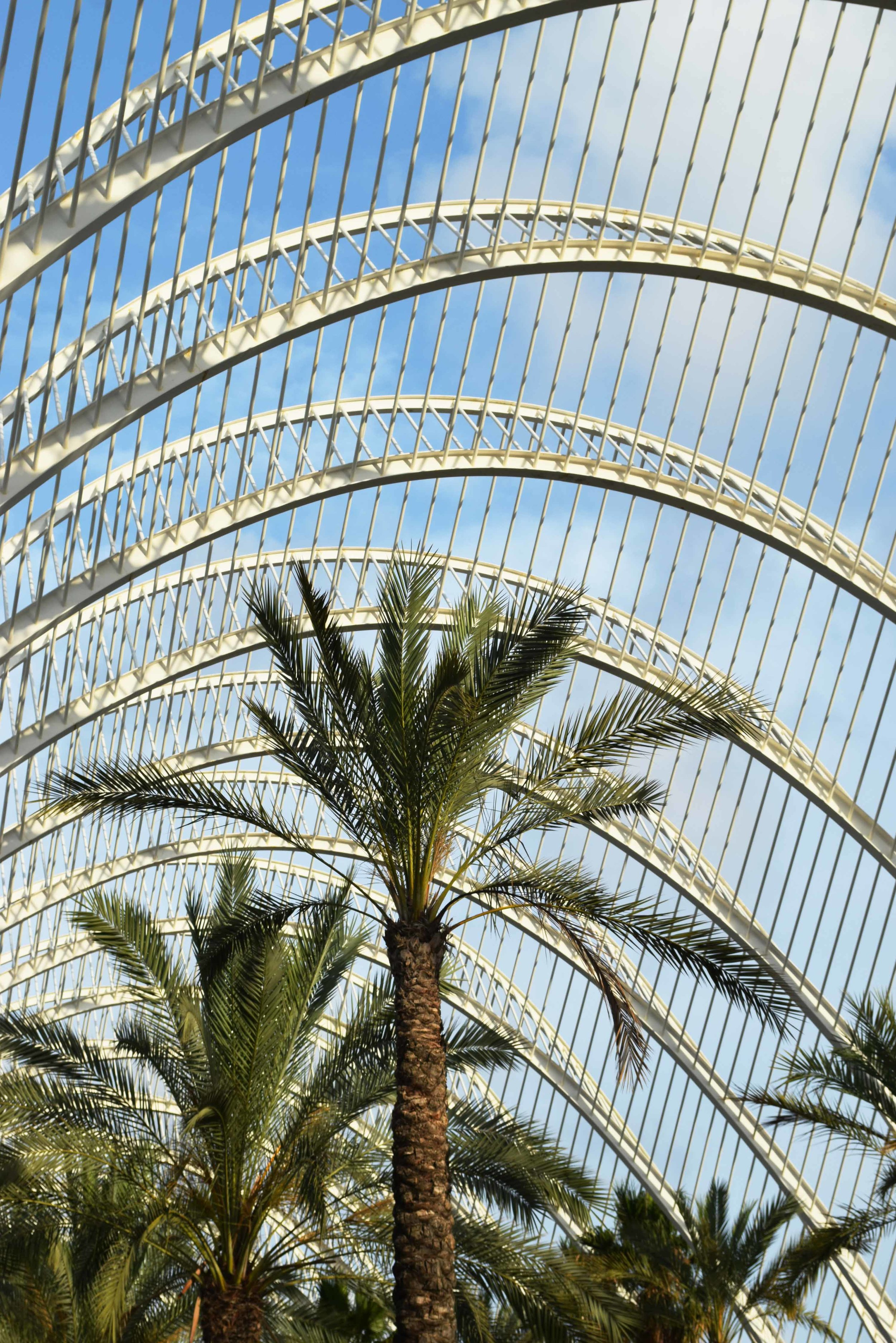 Umbracle City of Science Valencia ©Detail Movement