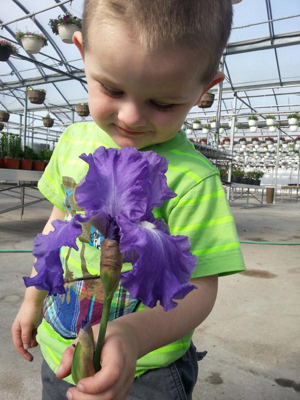 Zander smelling the iris.jpg