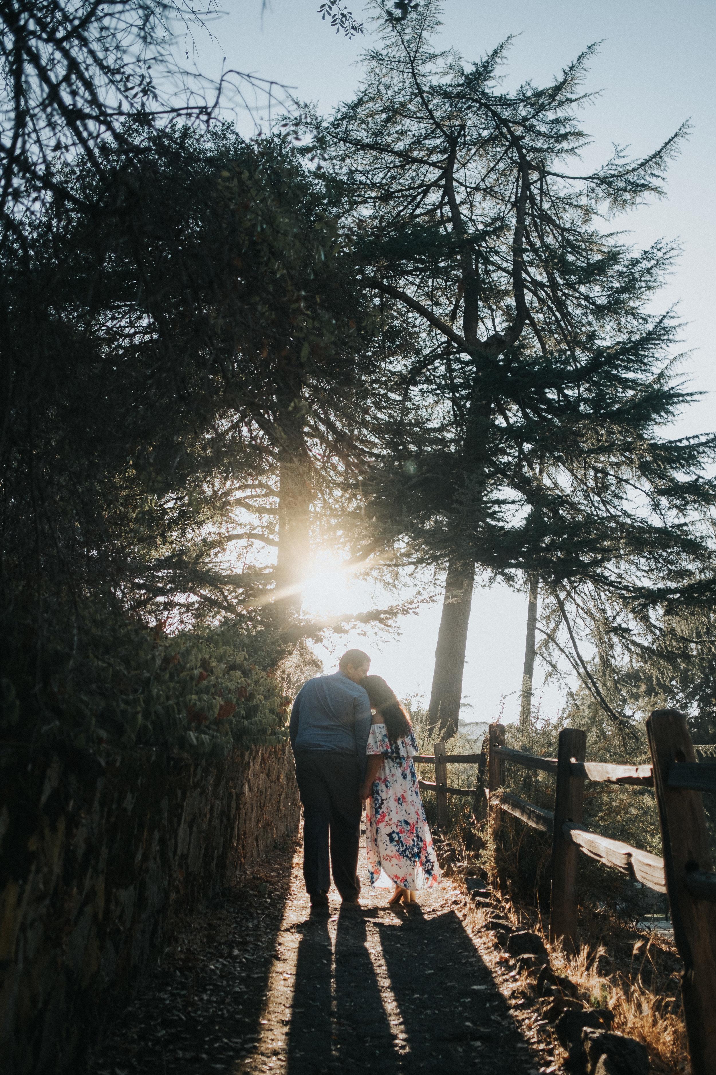 San Jose Alum Rock Park Engagement Photos