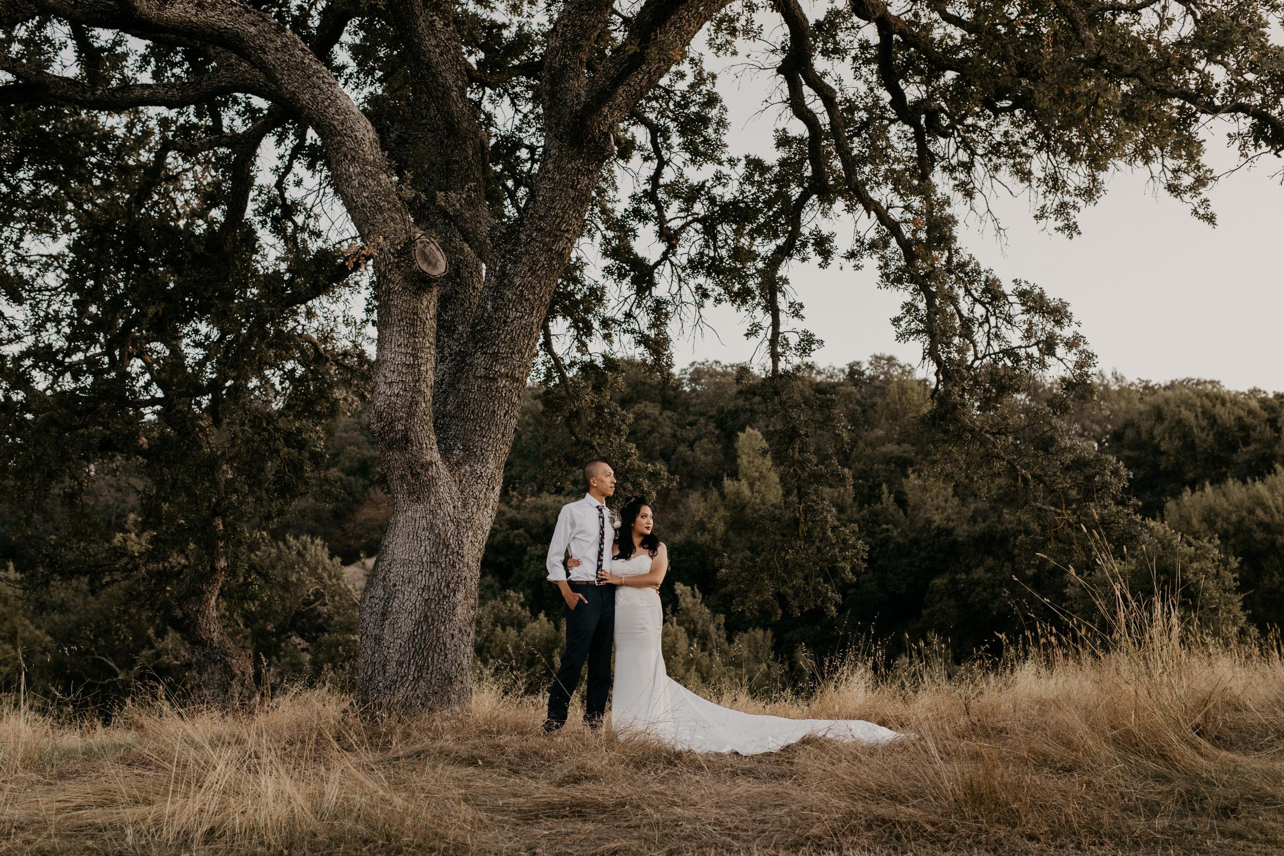 Wedgewood Weddings Morgan Hill  Photography