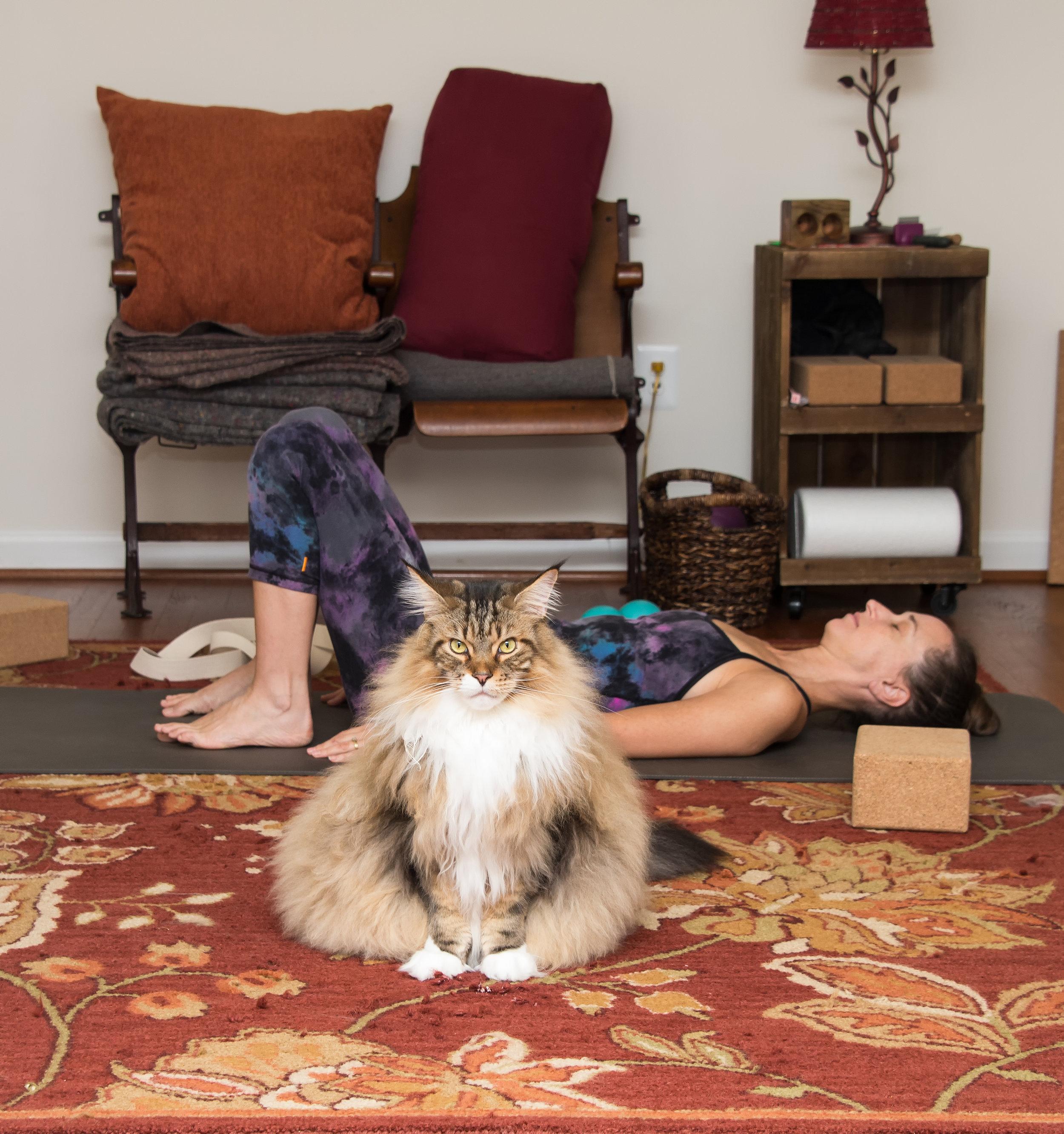 Home Practice Photo.jpg