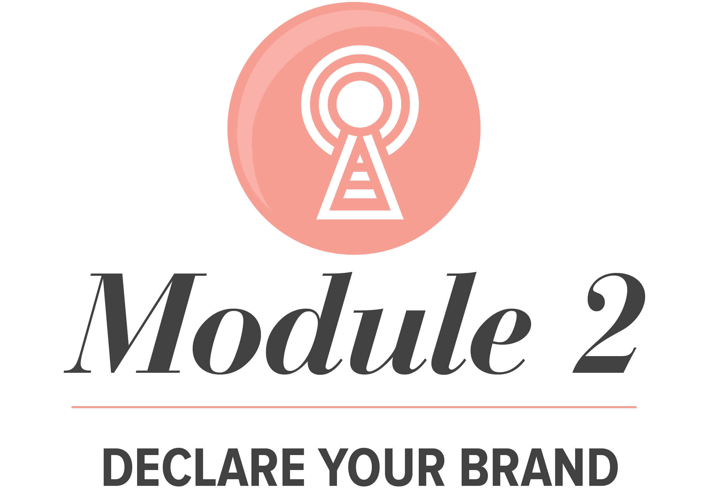 Module 2 of Pursuit with Passion Program for Entrepreneurs needing branding tips and a website.