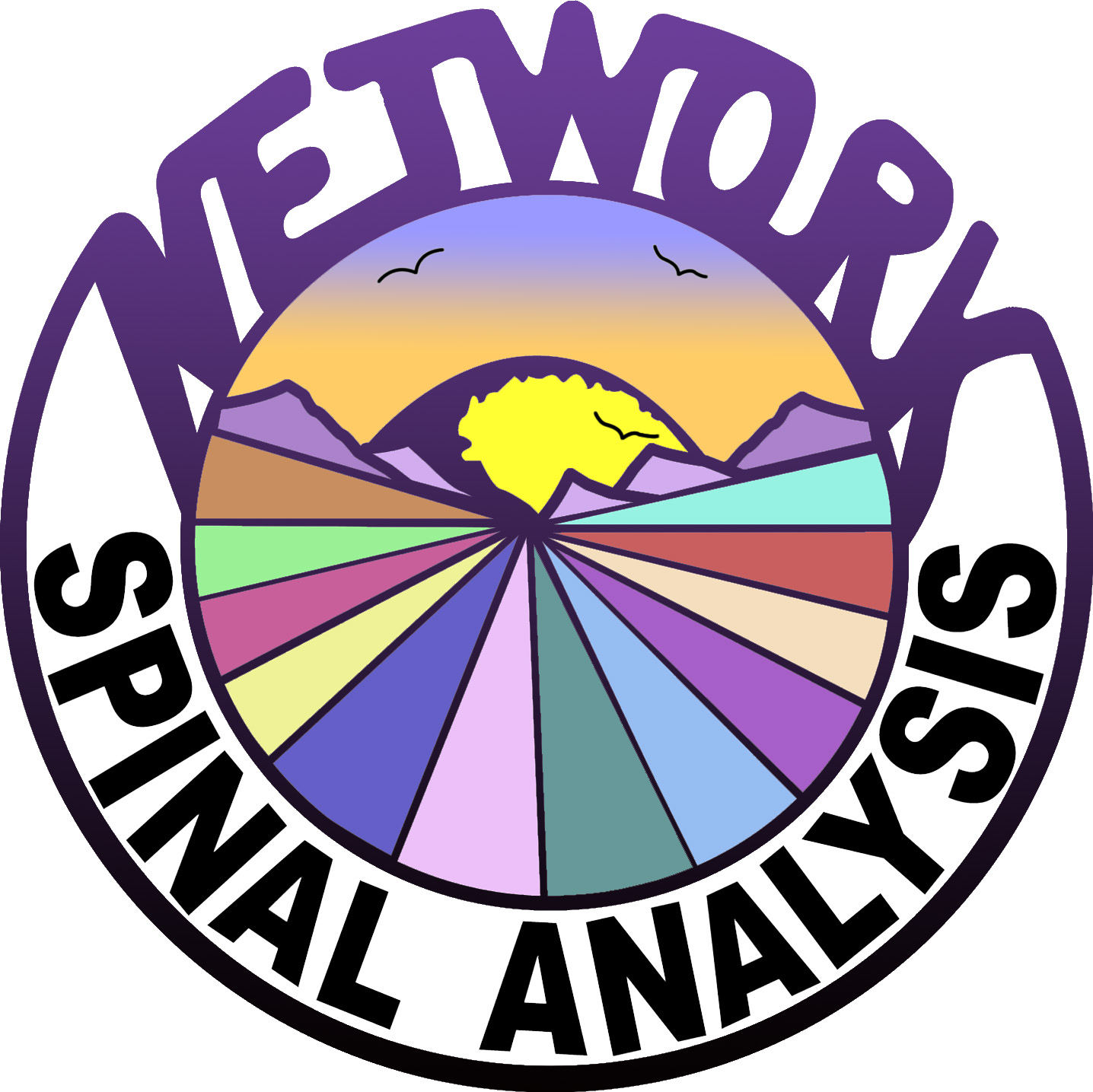 Network Spinal Analysis