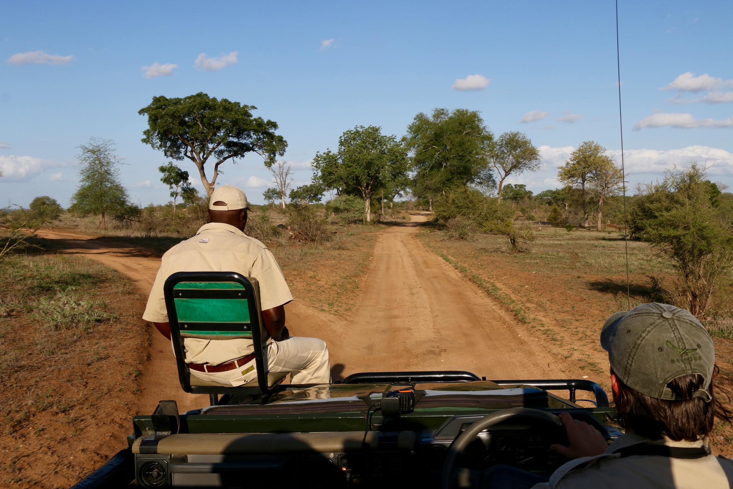 The view of the Land ROver on the game drive.