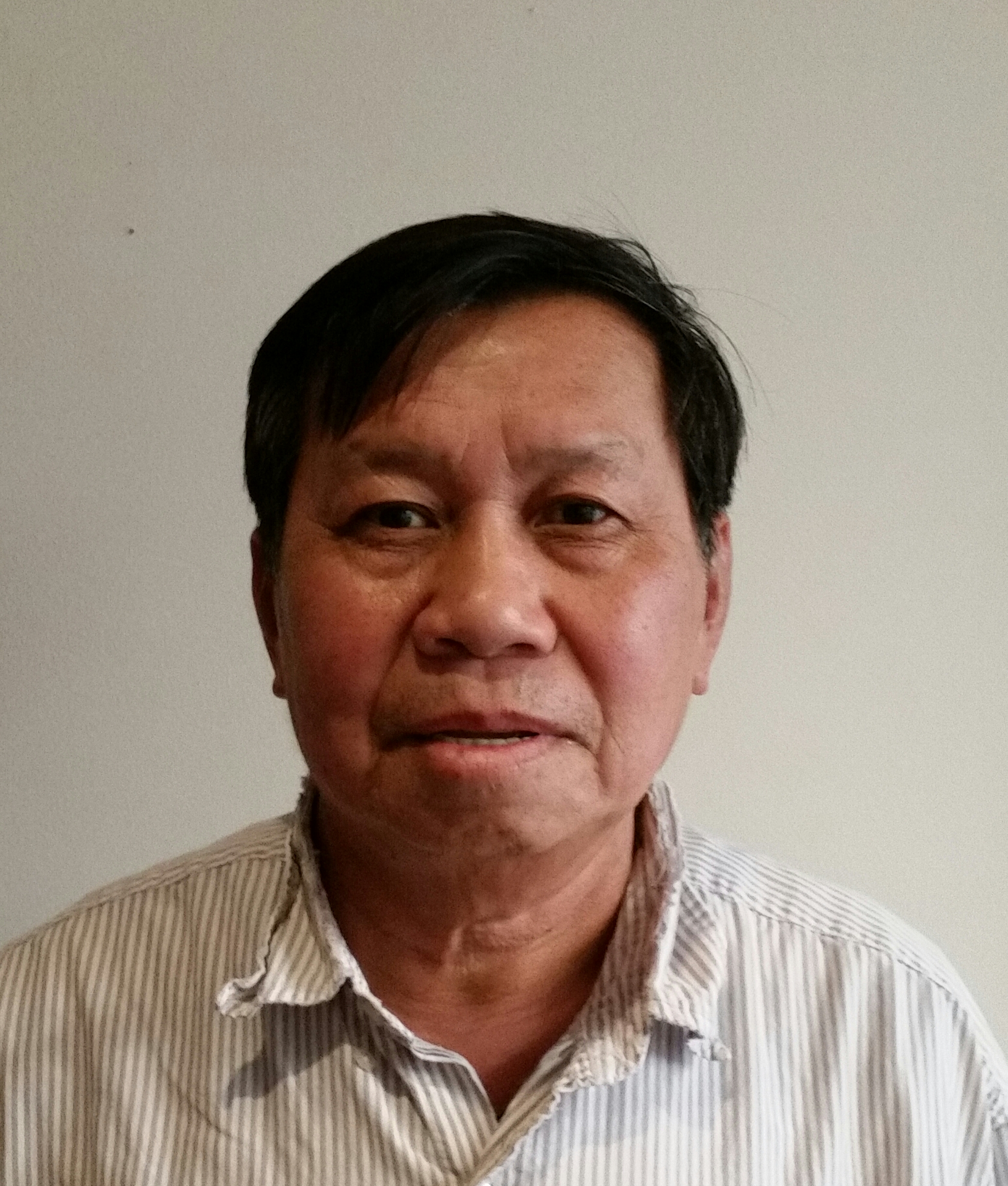 Kevin Phengsitthy, Custodian