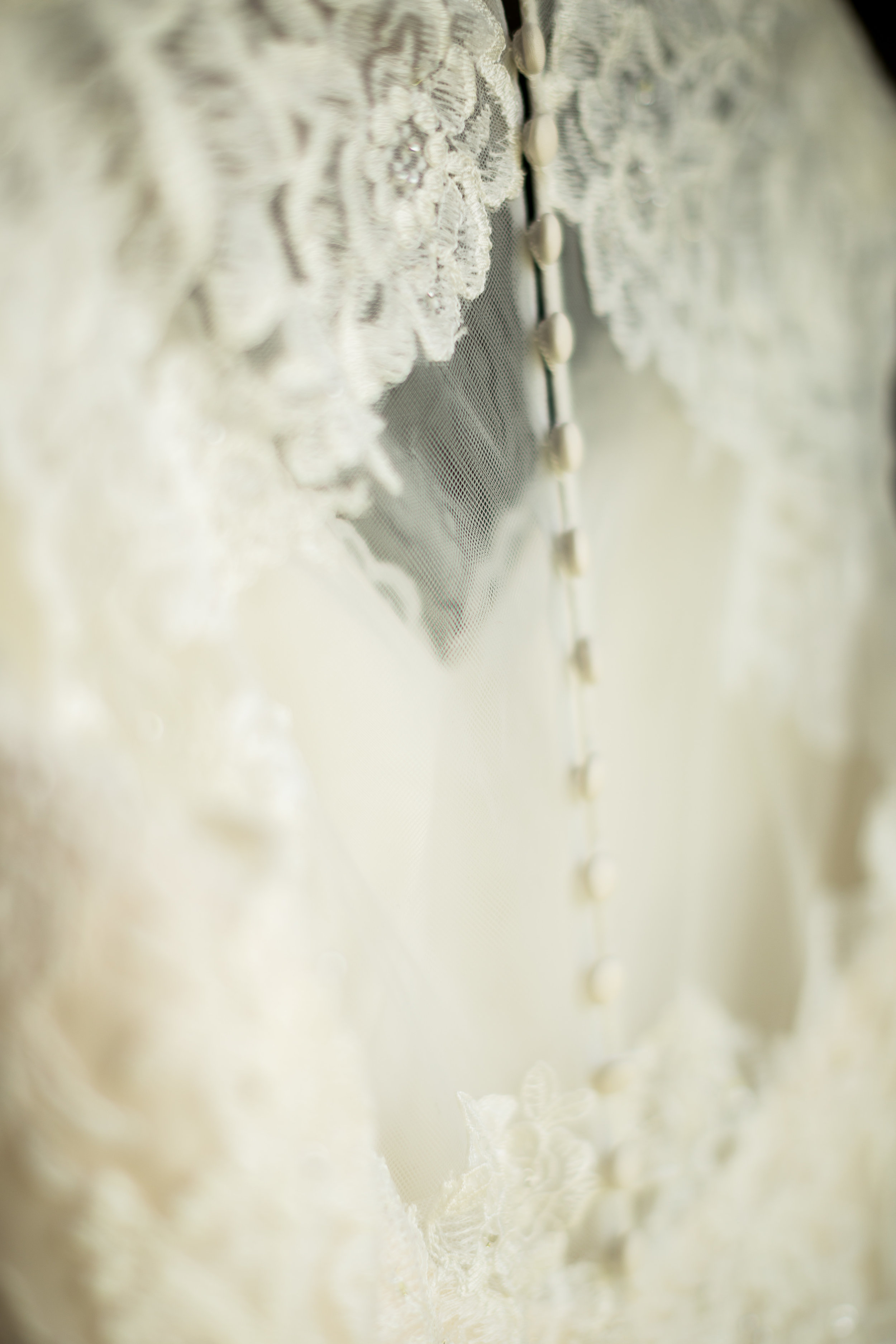 Abigail Berge Photography-Pillman-30.jpg