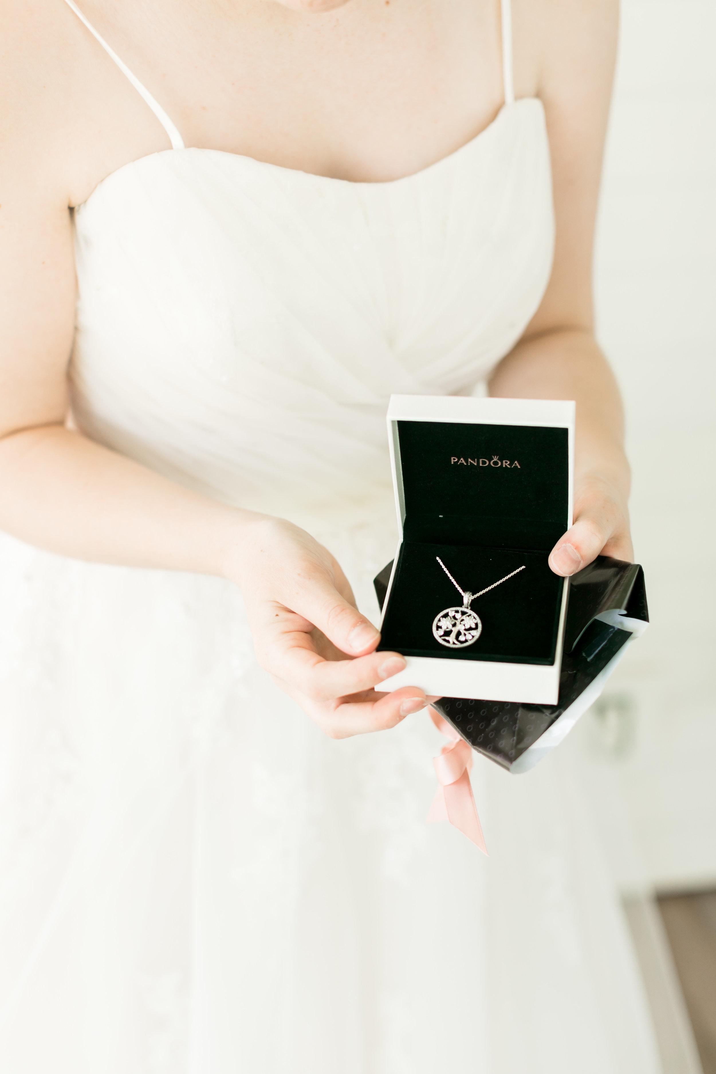 Abigail Berge Photography-JJ-Wedding-119.jpg