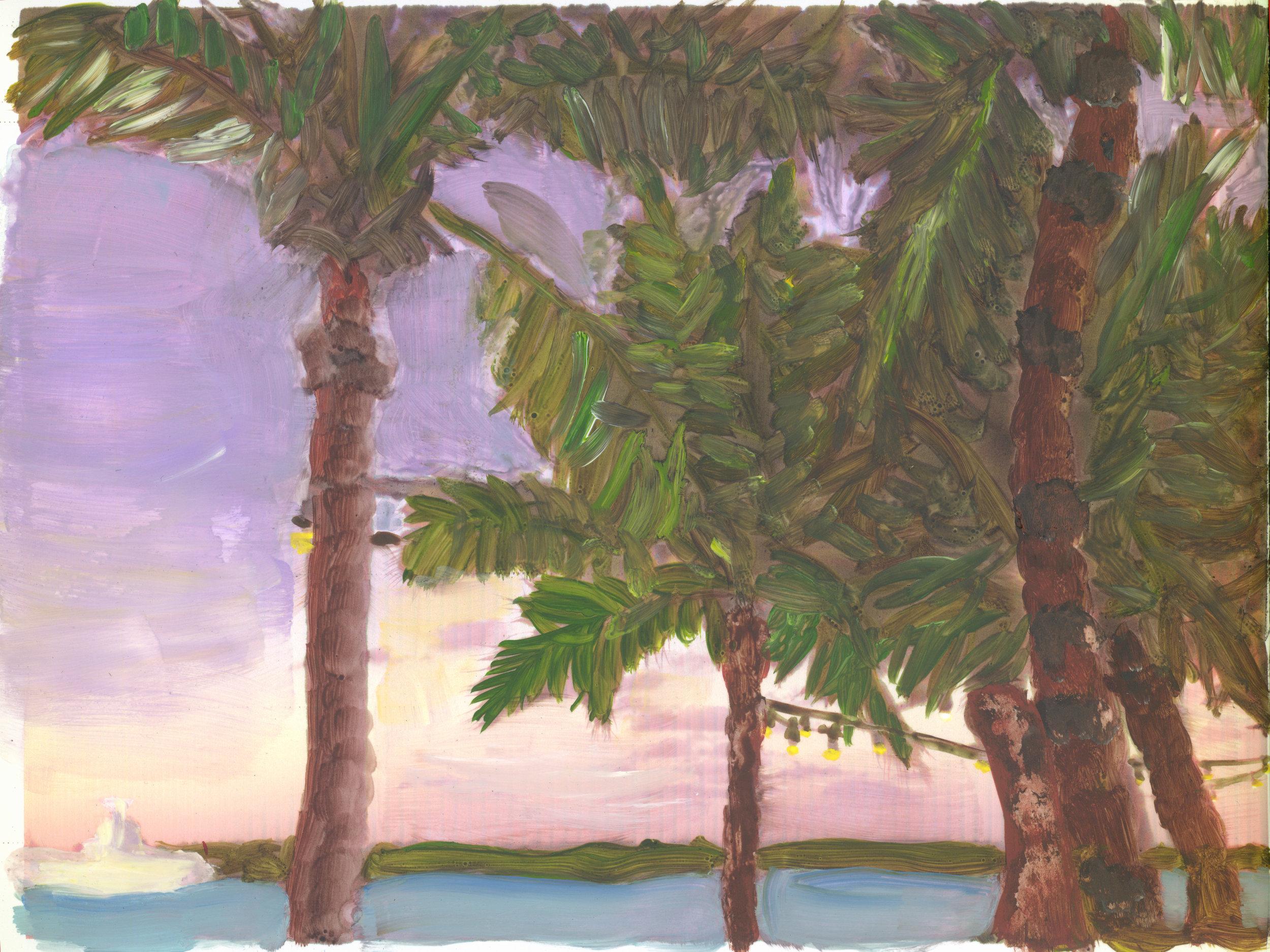 Sunset in Turks in Caicos