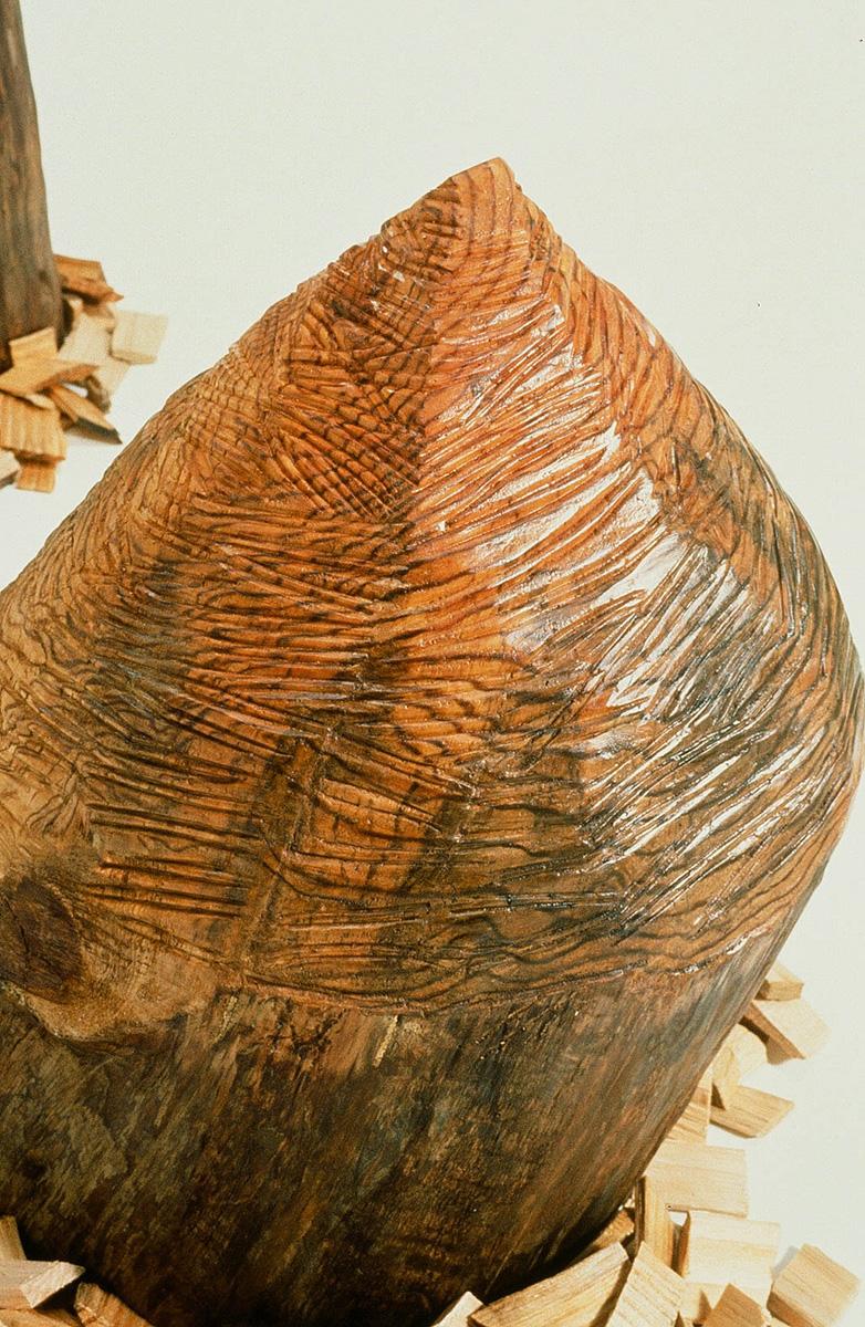Beaver Chews, 1993 (detail)