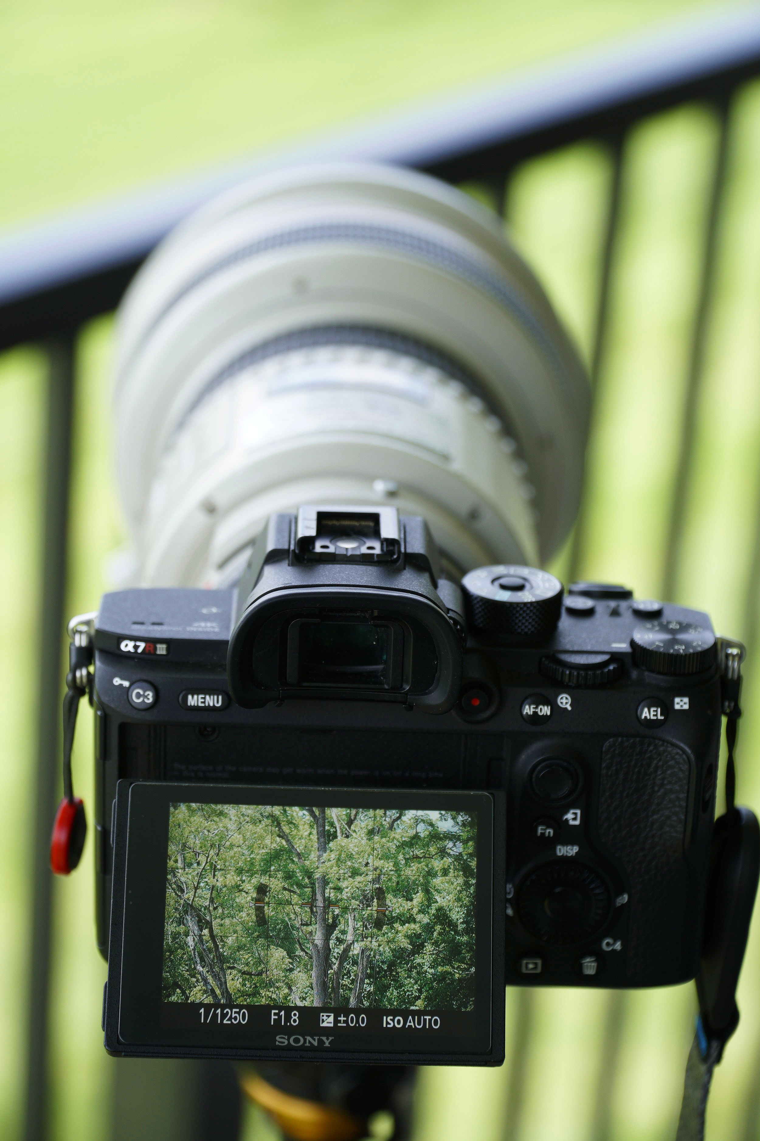 Autofocus is fast and accurate at any aperture