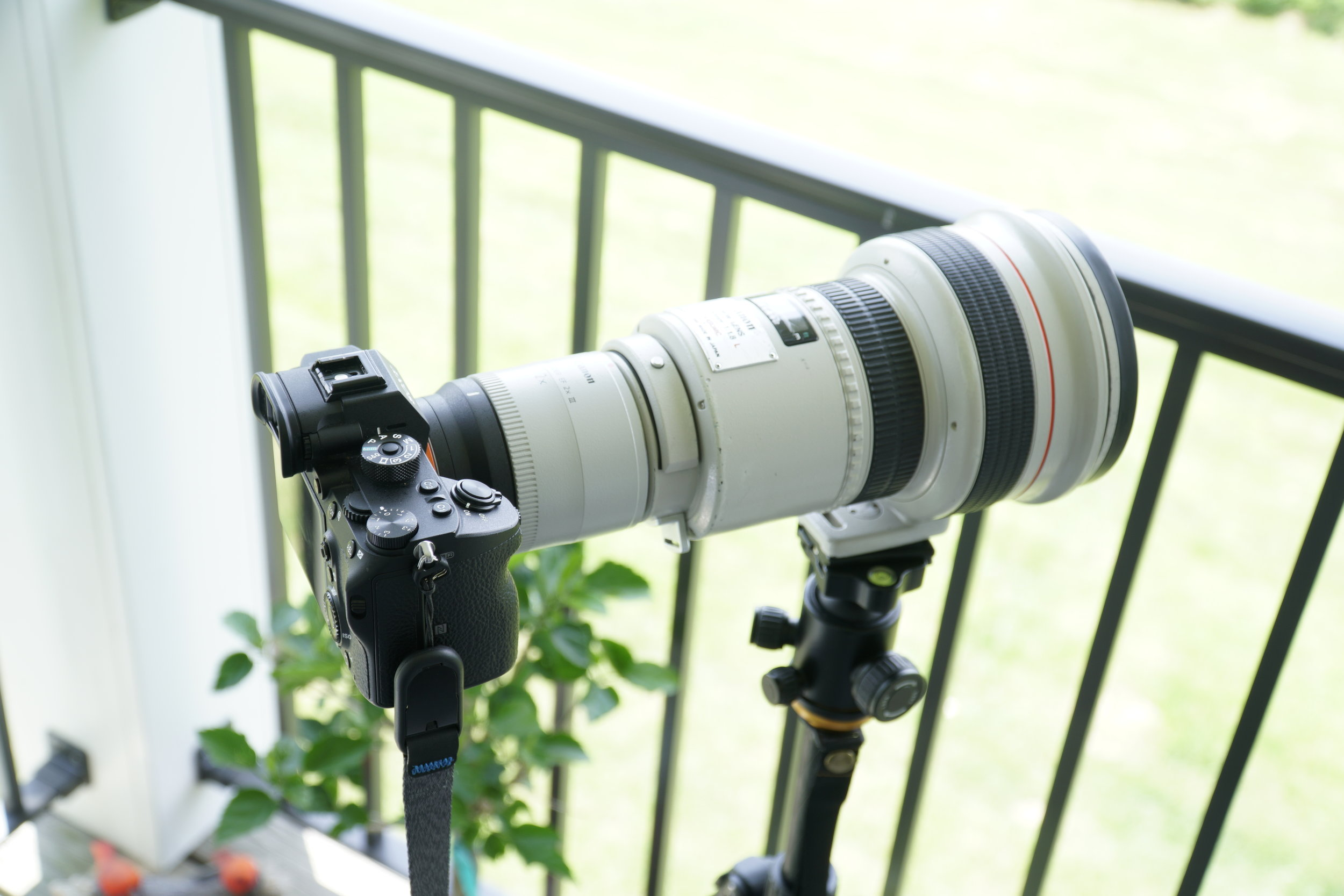 Shown here with a Canon EF 2X III