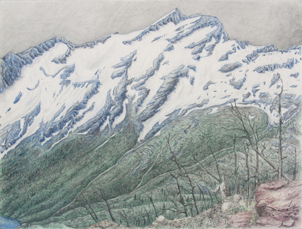 "Swan: Bob Marshall Wilderness.  Graphite and color pencil. 18""x24"". 2014."