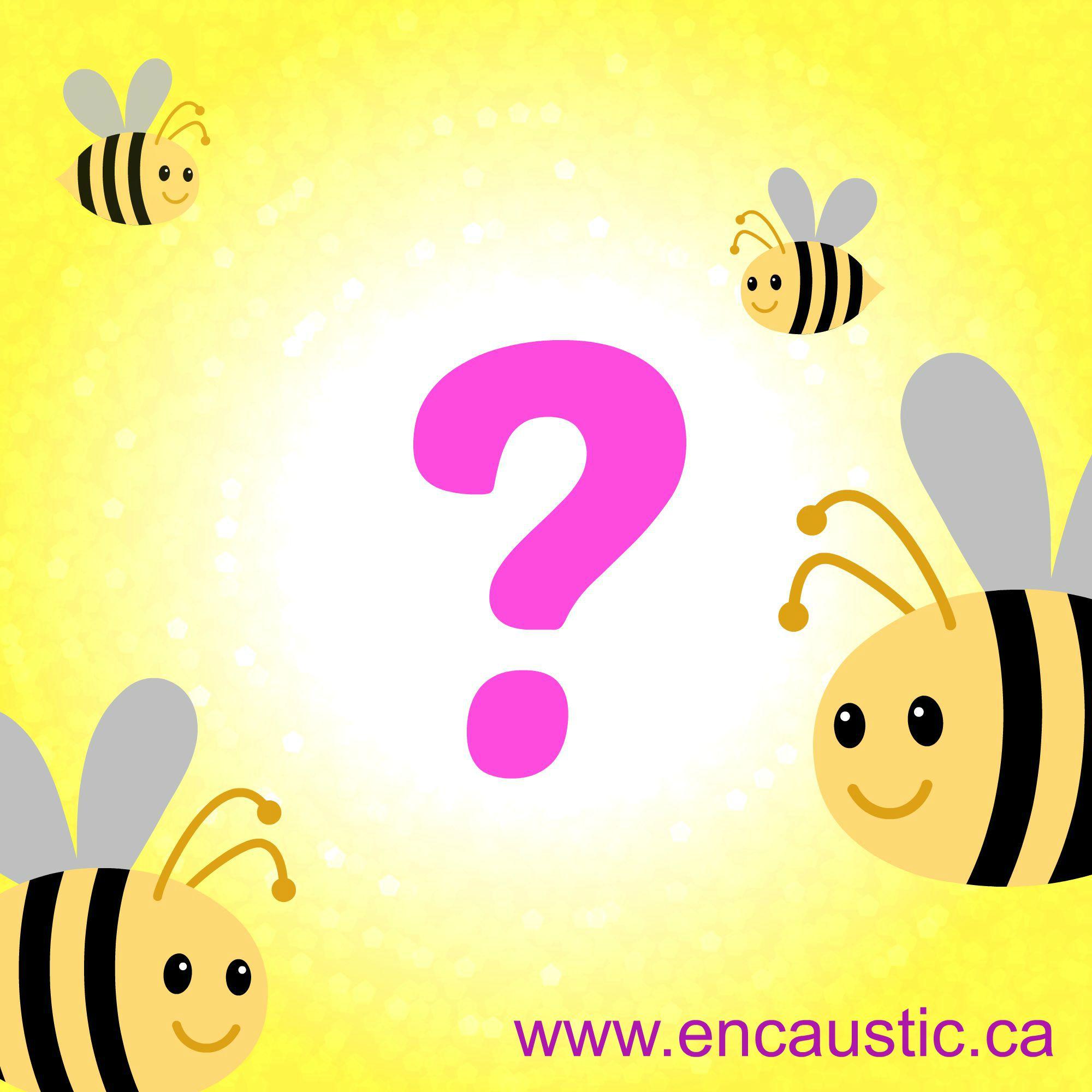 Bee Question branded.jpg
