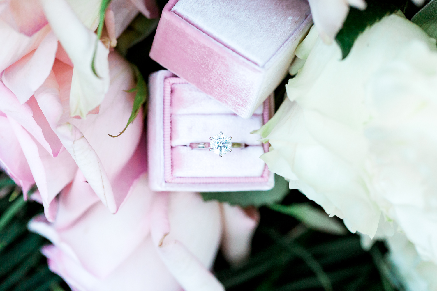 engagement ring picture in Mrs Box