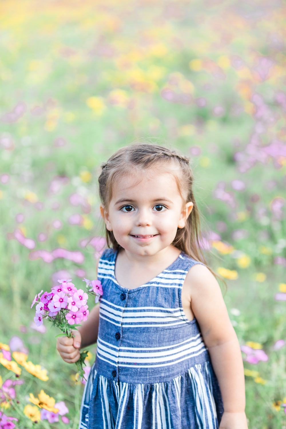 family photos in the flower field